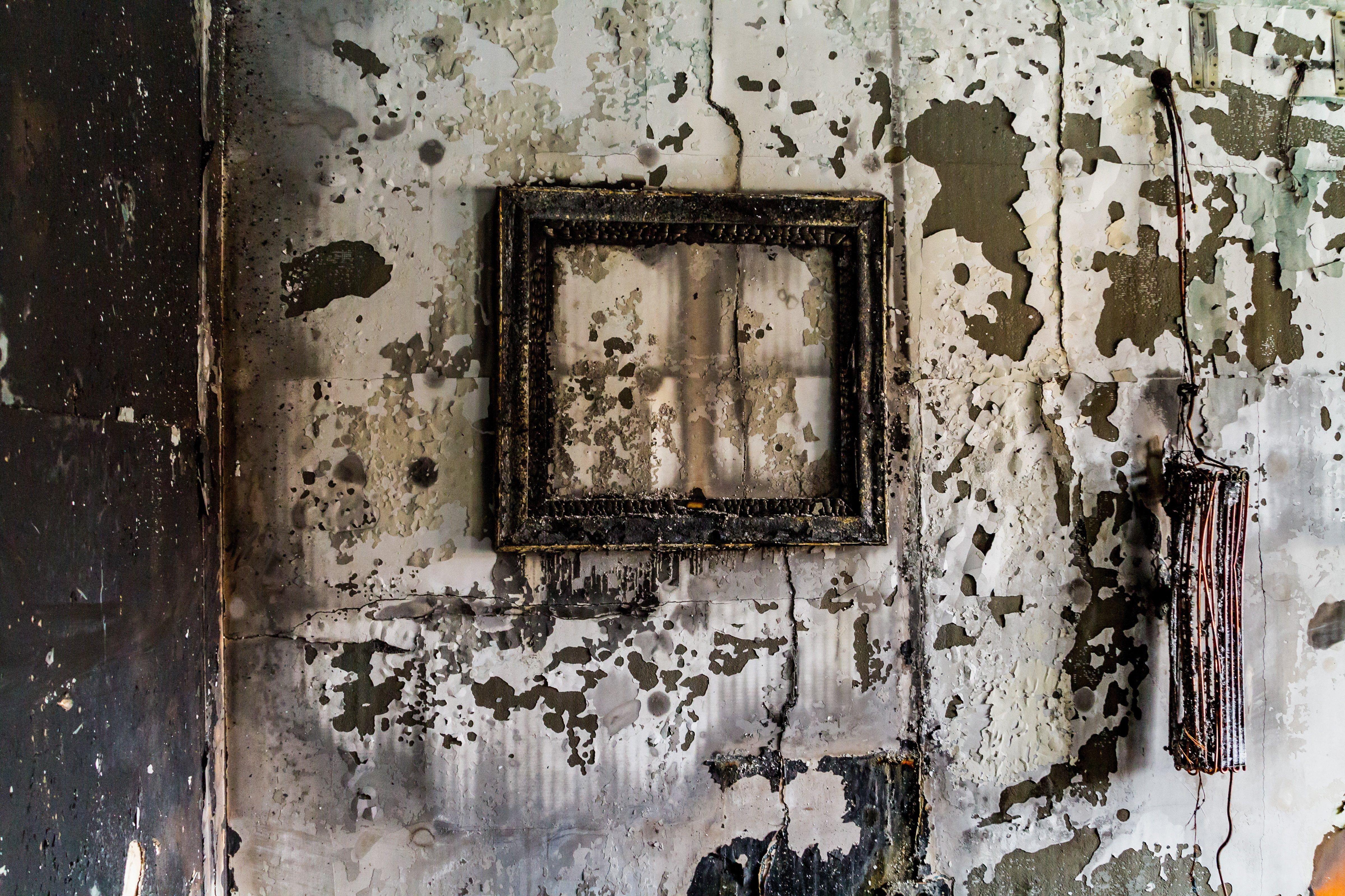 Elítélték a három szélsőjobbos, oroszbarát lengyel férfit, akik felgyújtották a Kárpátaljai Magyar Kulturális Szövetség irodáját