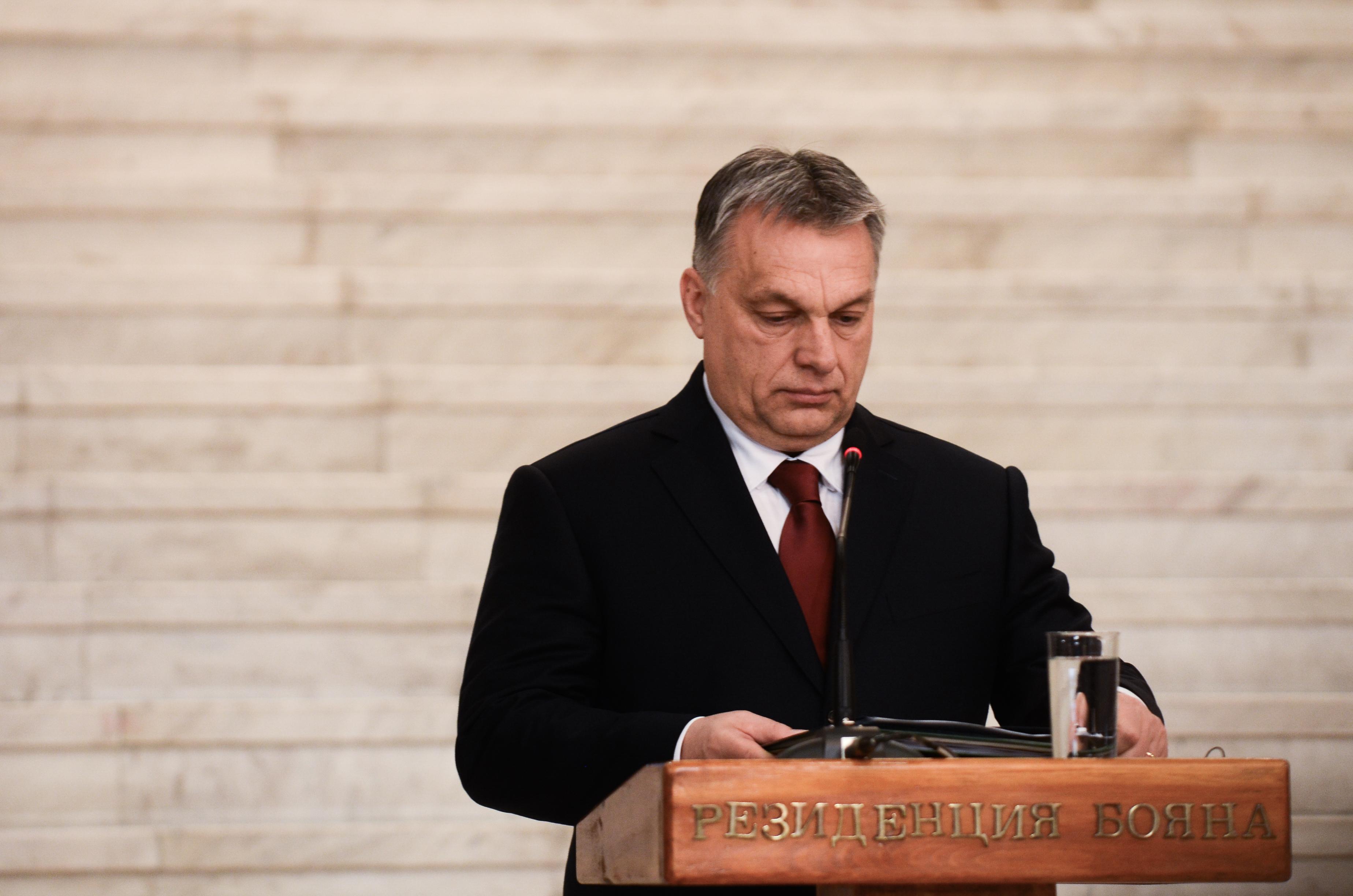 Orbán kitüntette a téli olimpia bajnokait, és jól megdicsérte a kormányt