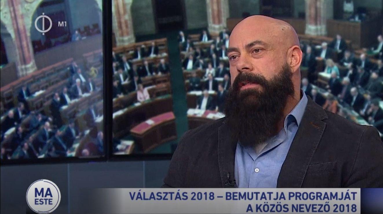 Új pártot jegyeztek be a Gődény Györgyével szomszédos telekre