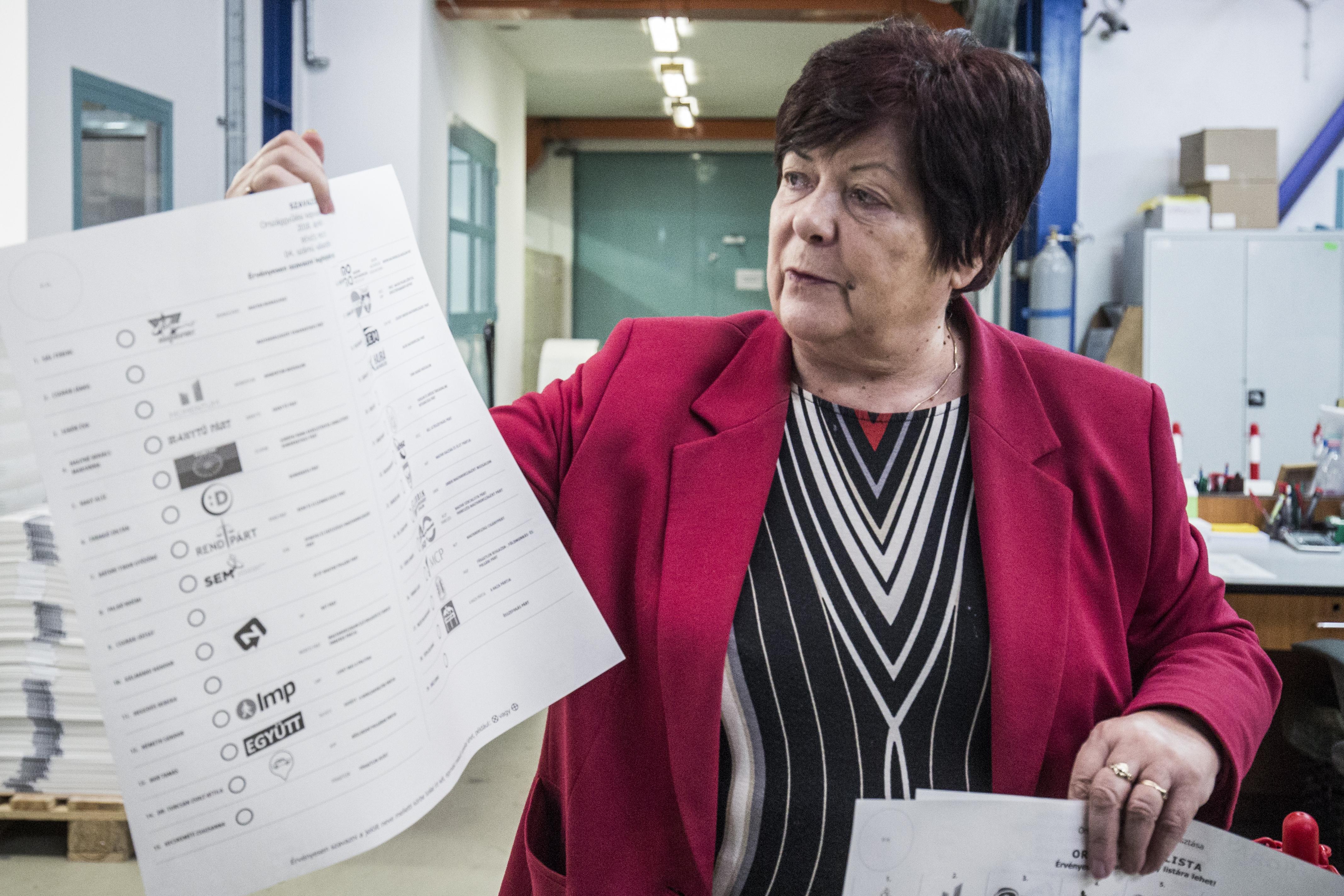 Lemondott Pálffy Ilona, a Nemzeti Választási Iroda elnöke