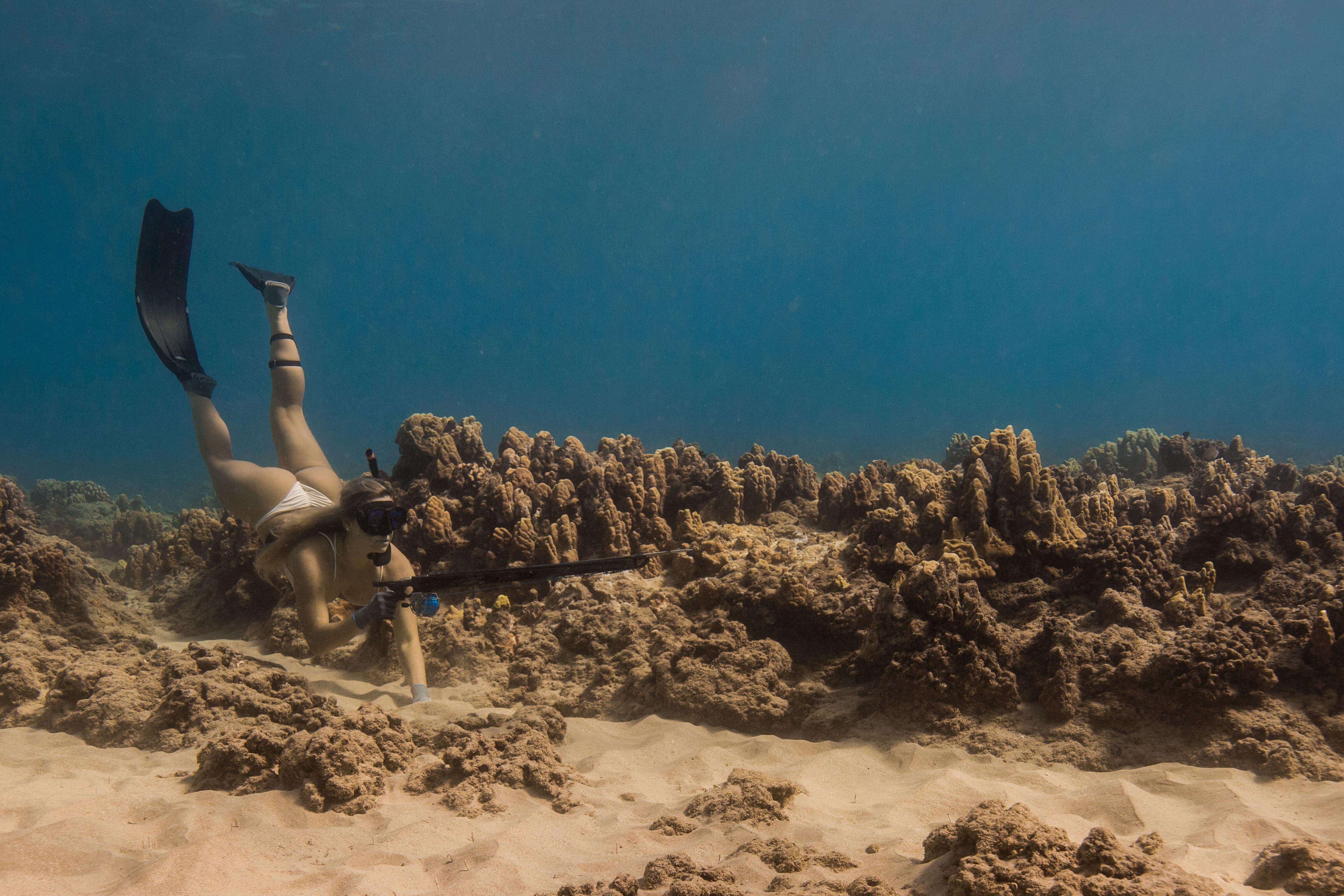 Hawaii-on betiltanak naptejeket, mert roncsolják a korallokat