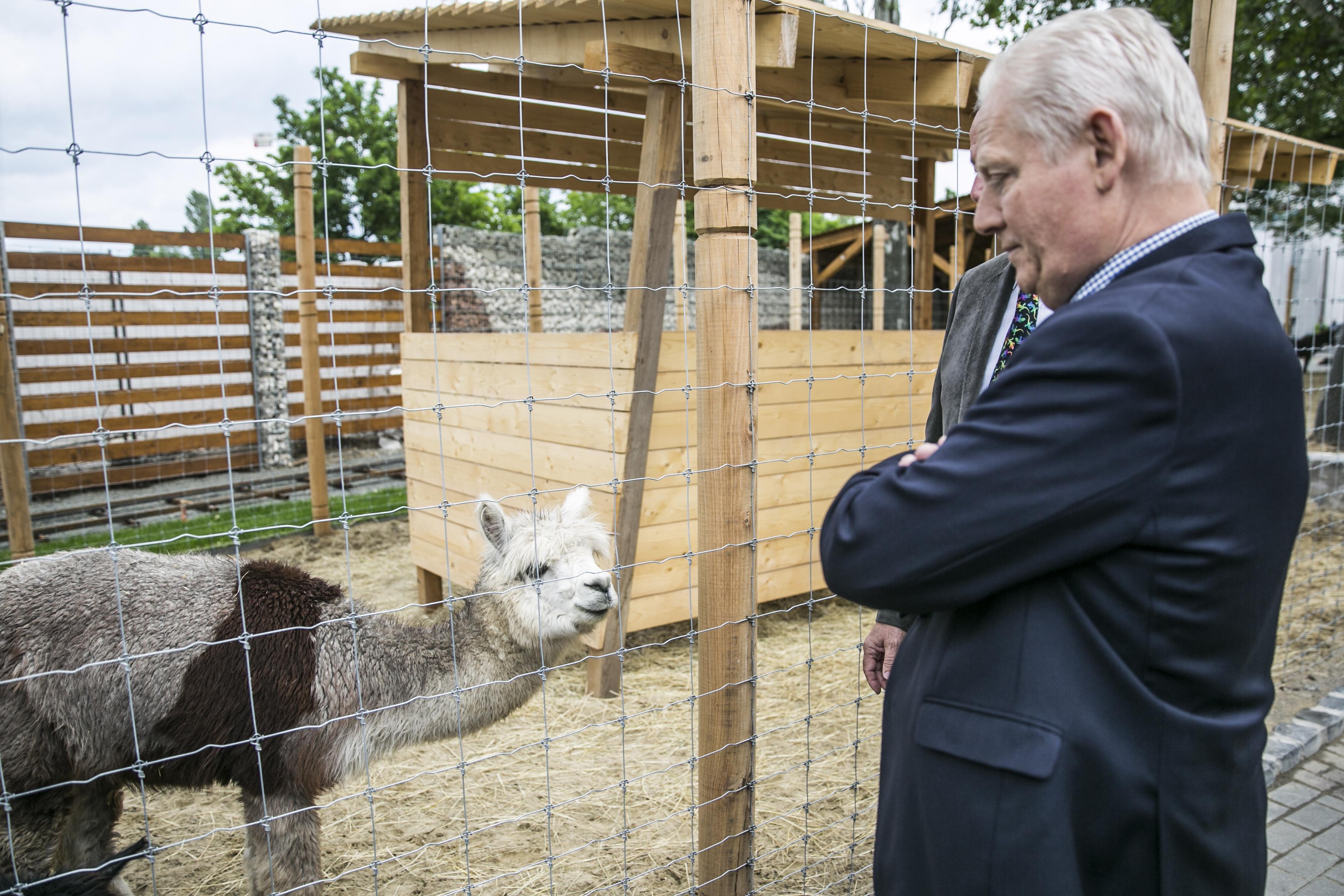 Megszámolták, hány lakója van a budapesti állatkertnek
