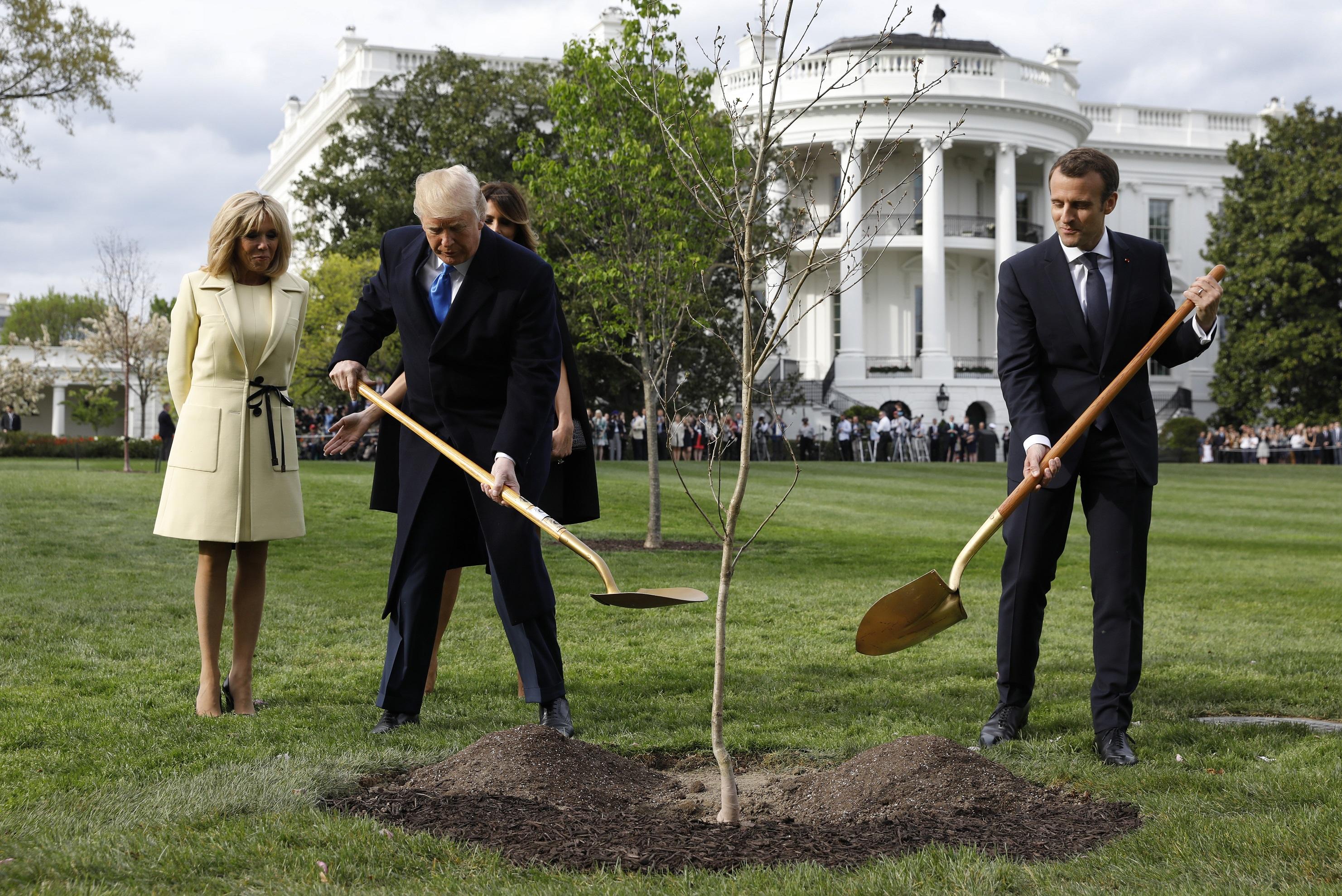 Egy gödör keletkezett a Fehér Ház gyepén