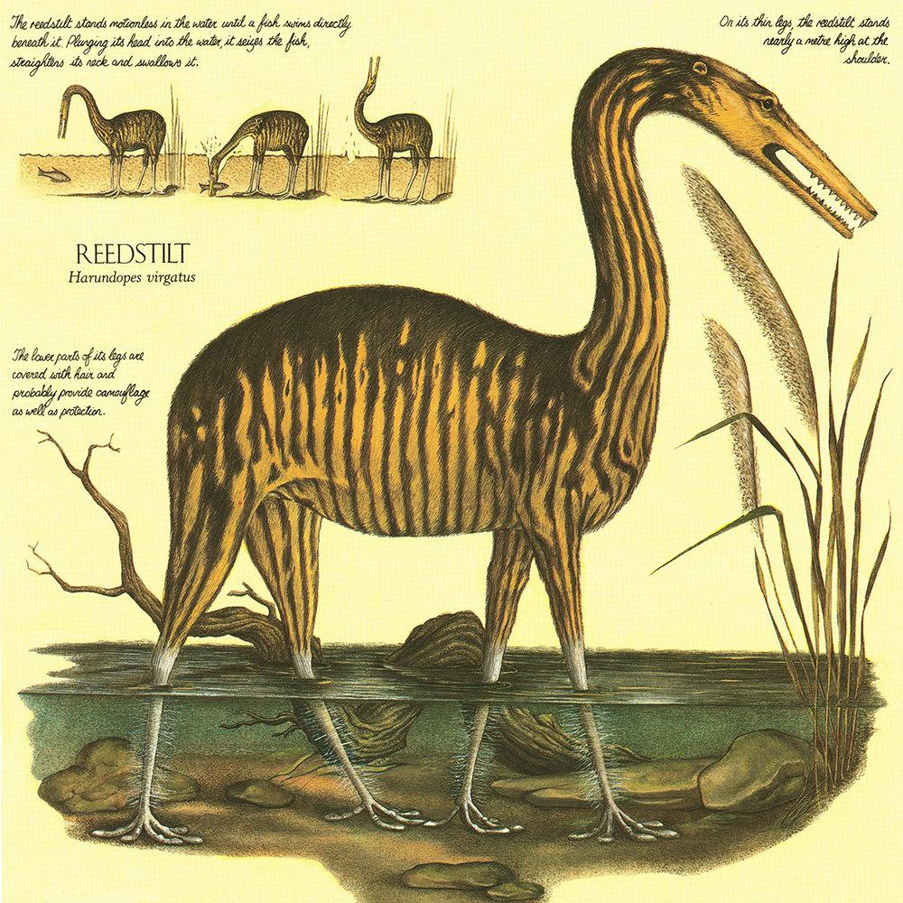 Milyen állatok élnek majd a Földön 50 millió évvel az ember kihalása után?