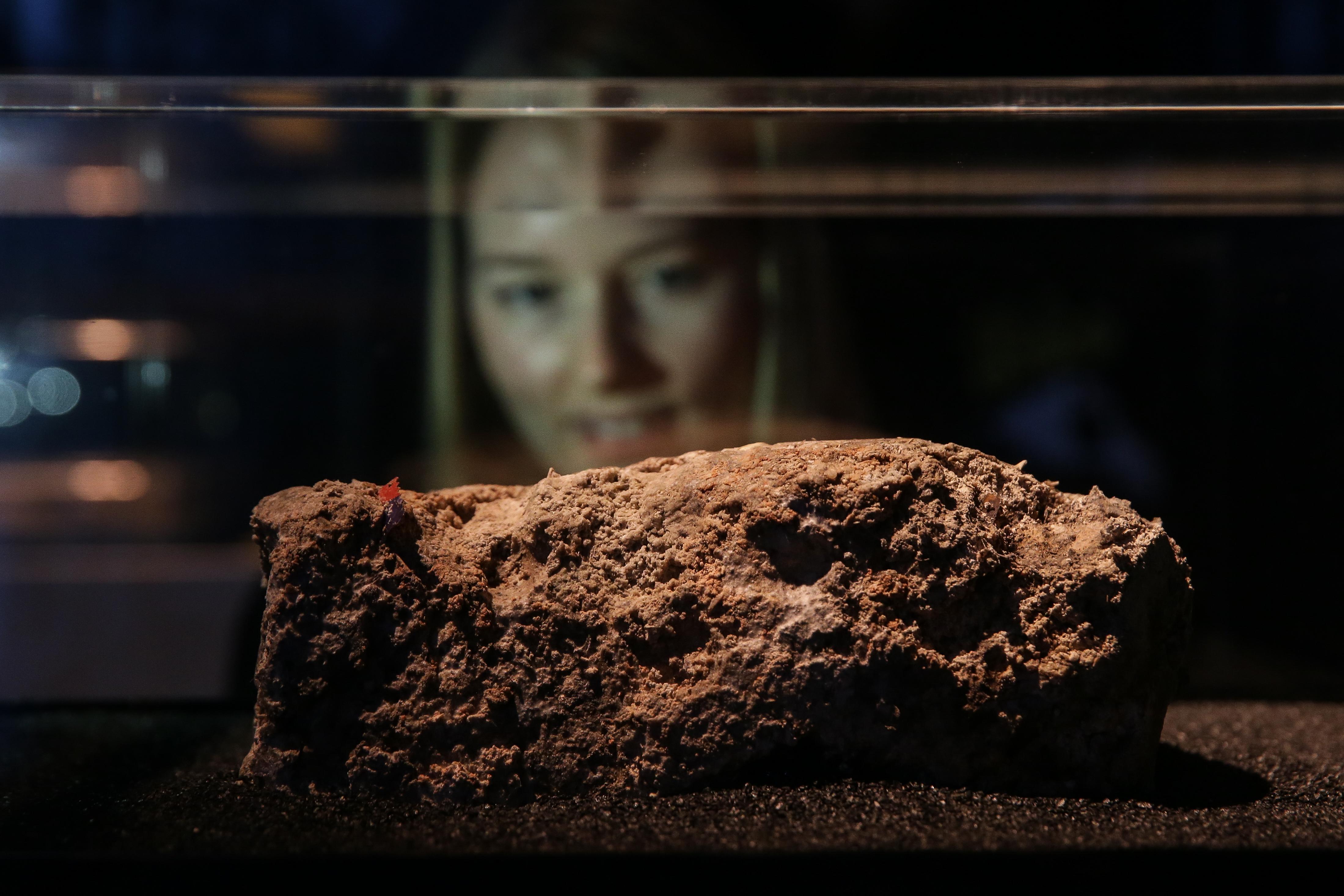 A közönség imádja a múzeumban kiállított, misztikus zsírhegyet