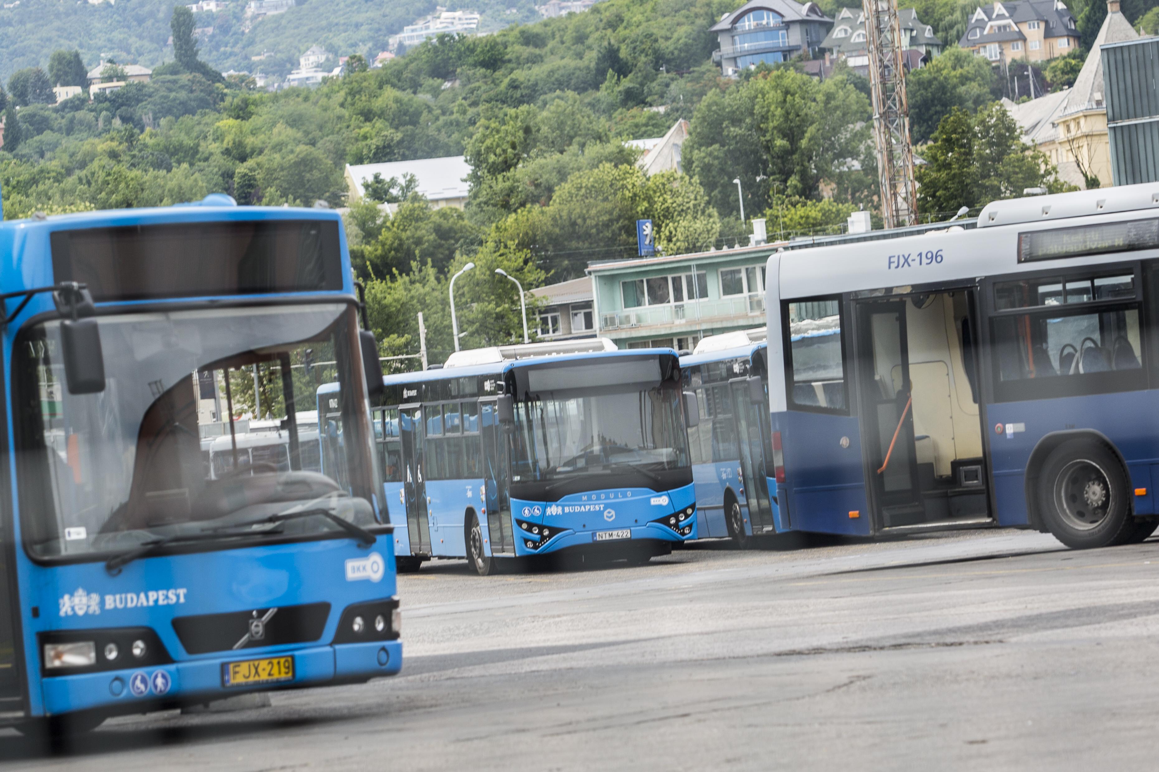 Ciprusi offshore cég áll amögött a vállalat mögött, amitől a BKV buszokat fog bérelni
