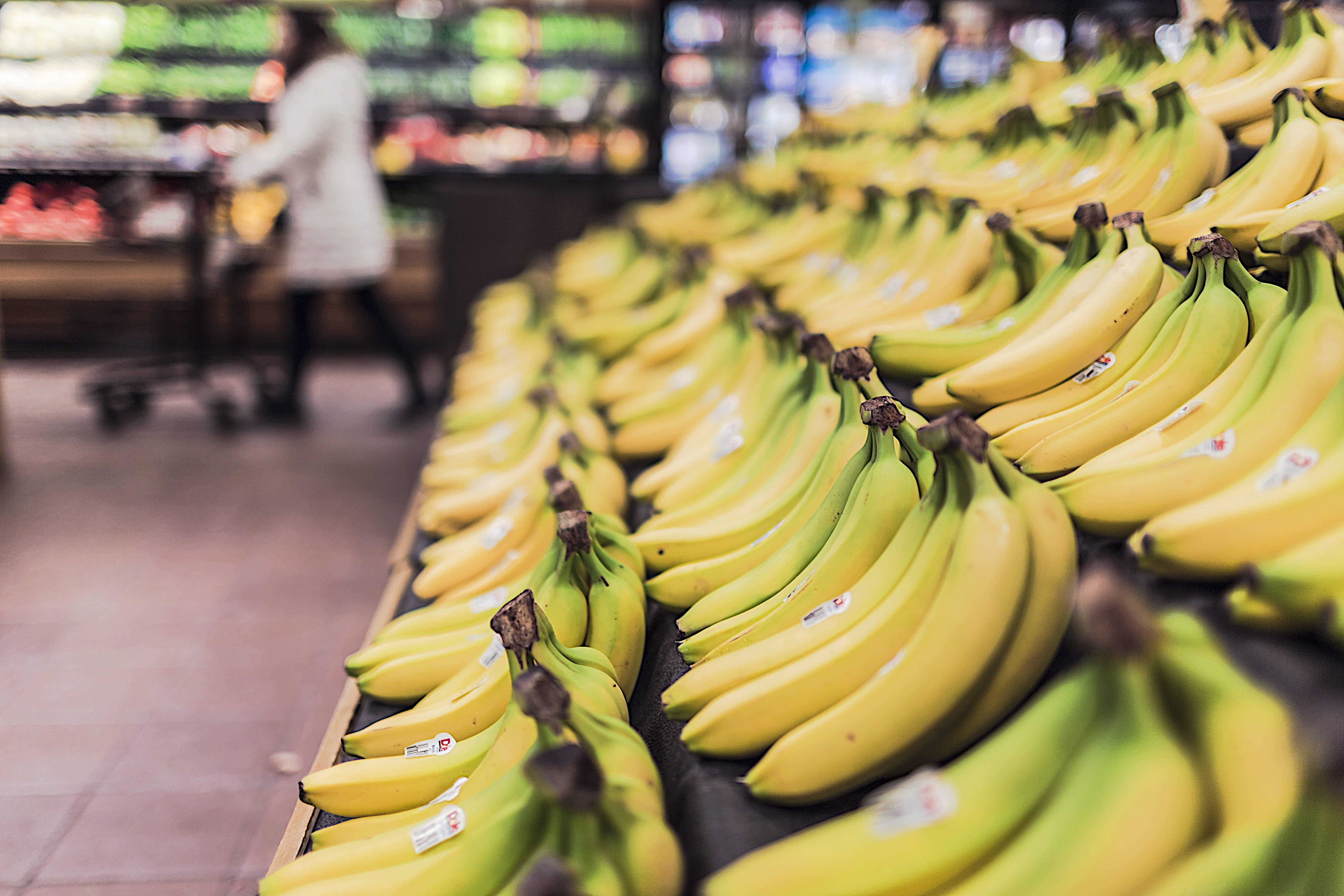 Kipusztulhat a banánfaj, amely megmenthet minden más banánt a kipusztulástól
