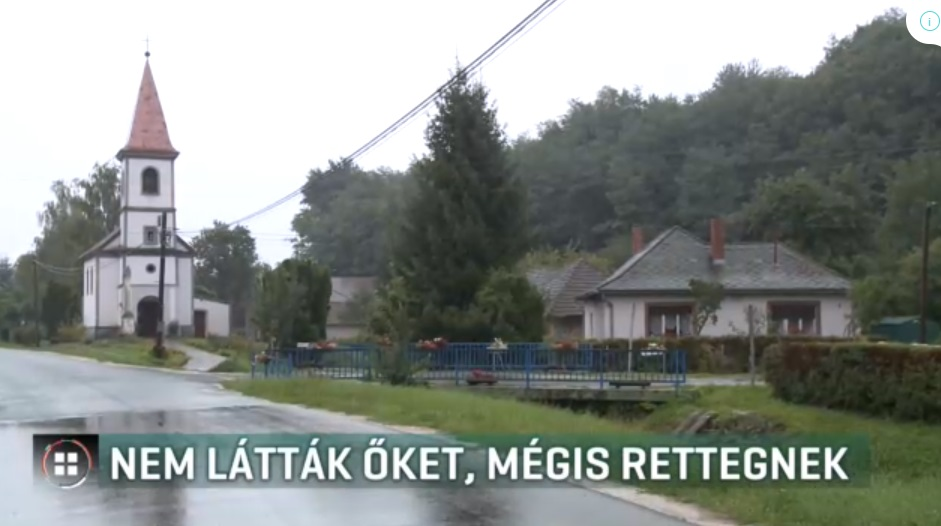A zalaszentmártoni polgármester szerint semmi sértő sincs a feka kanok betelepítéséről szóló kommentben