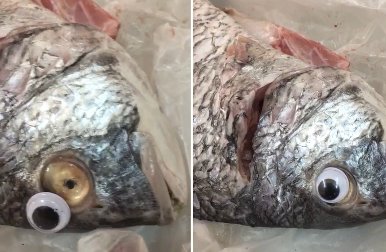 Bezárták a kuvaiti boltot, ahol műszemet ragasztottak a halakra, hogy frissebbnek tűnjenek