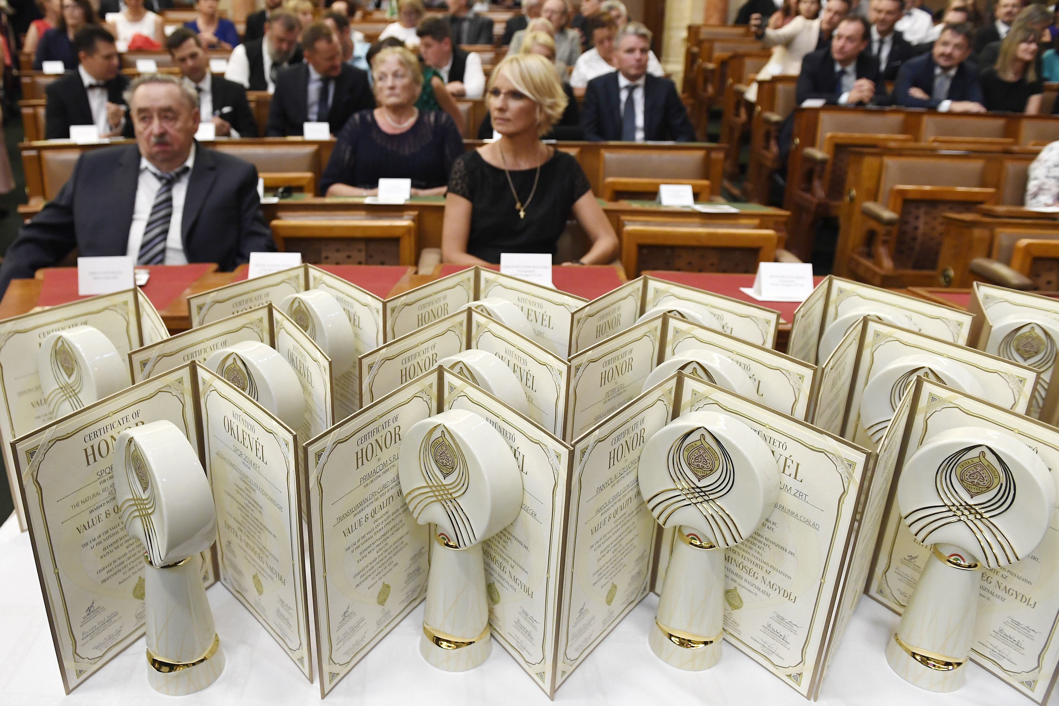 A közmédia, a TV2 és a világszínvonalú ECHO TV is nívódíjat kapott a Parlamentben