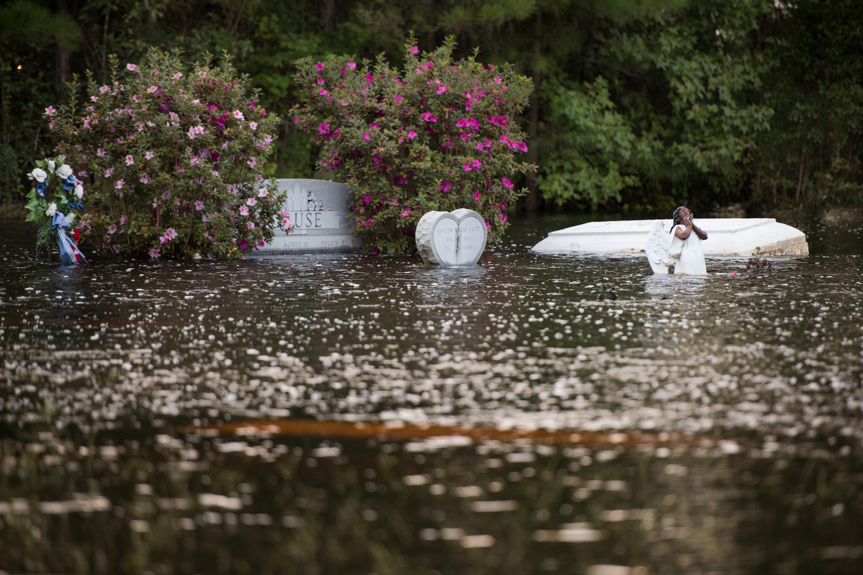 Óriási moszkitók lepték el Észak-Karolinát a Florence hurrikán pusztítása után