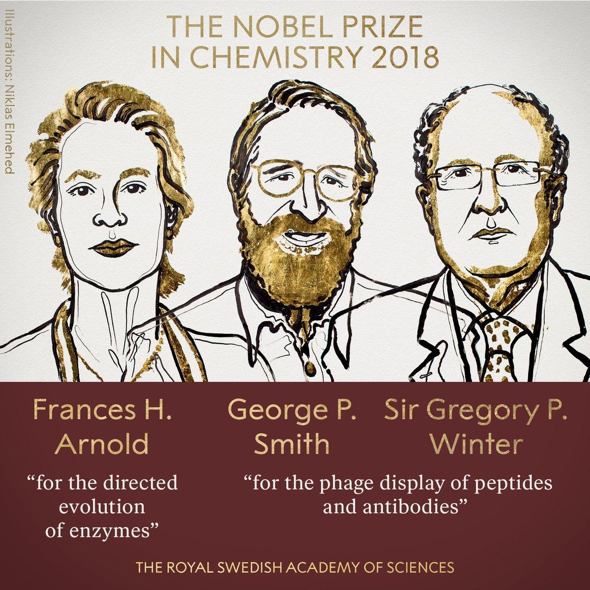 Fehérjekutatásokért jár az idei kémiai Nobel-díj