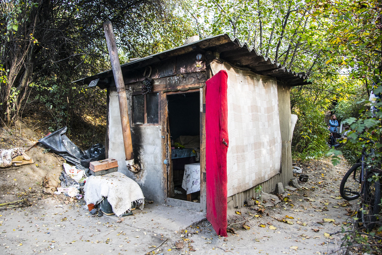 Megsemmisítették a hajléktalanok kunyhóit a Kőbánya-Kispest út melletti kiserdőben