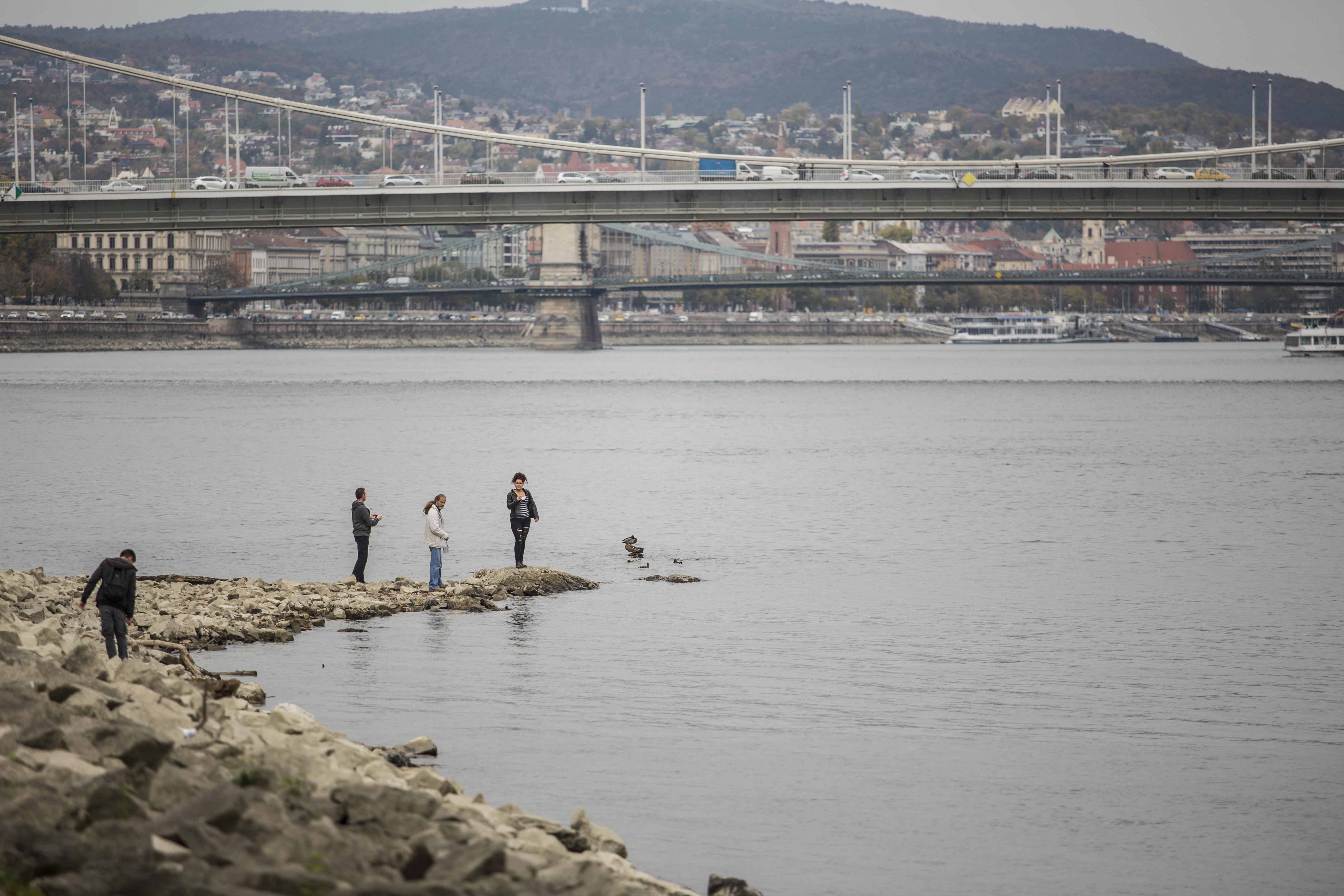 Súlyosan szennyezettek antibiotikummal a világ legnagyobb folyói, a Duna különösen az