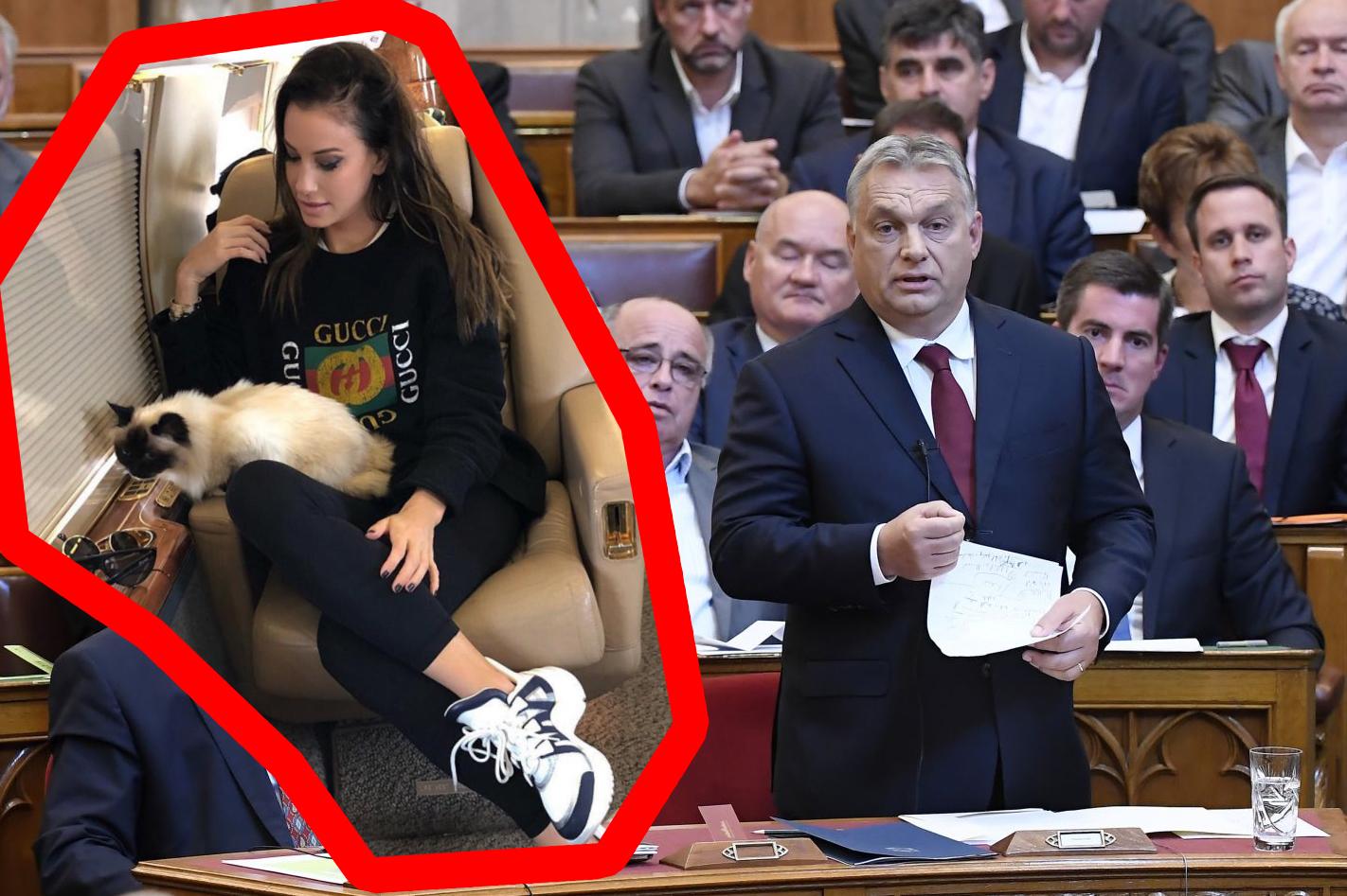 Orbán reakciója Vajna Tímea magángépes útjára: A Jobbik cicaügyben inkább forduljon Vonához