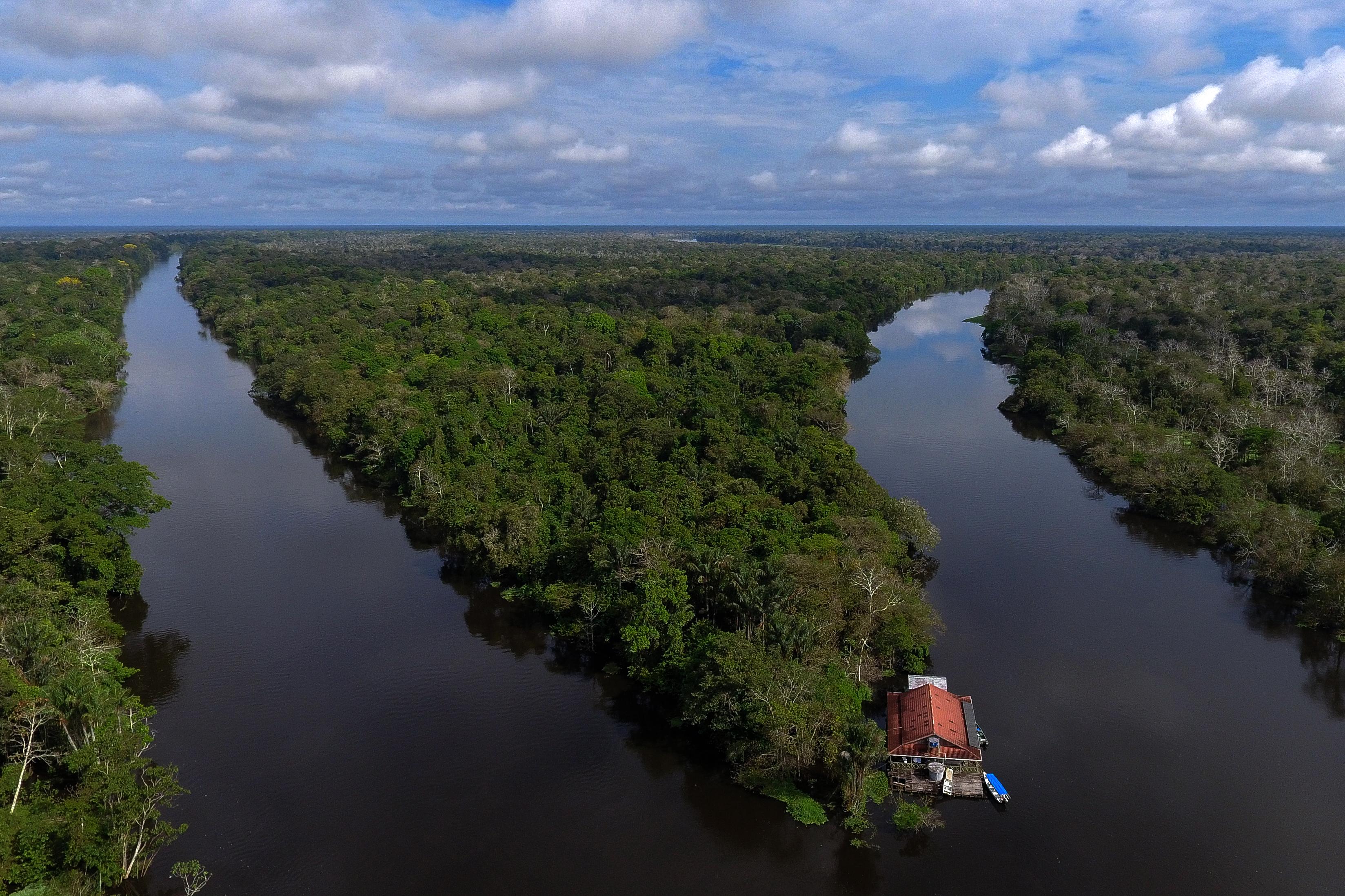 Olyan ütemben irtják az őserdőt Brazíliában, hogy az összeomlás lassan megállíthatatlan lesz