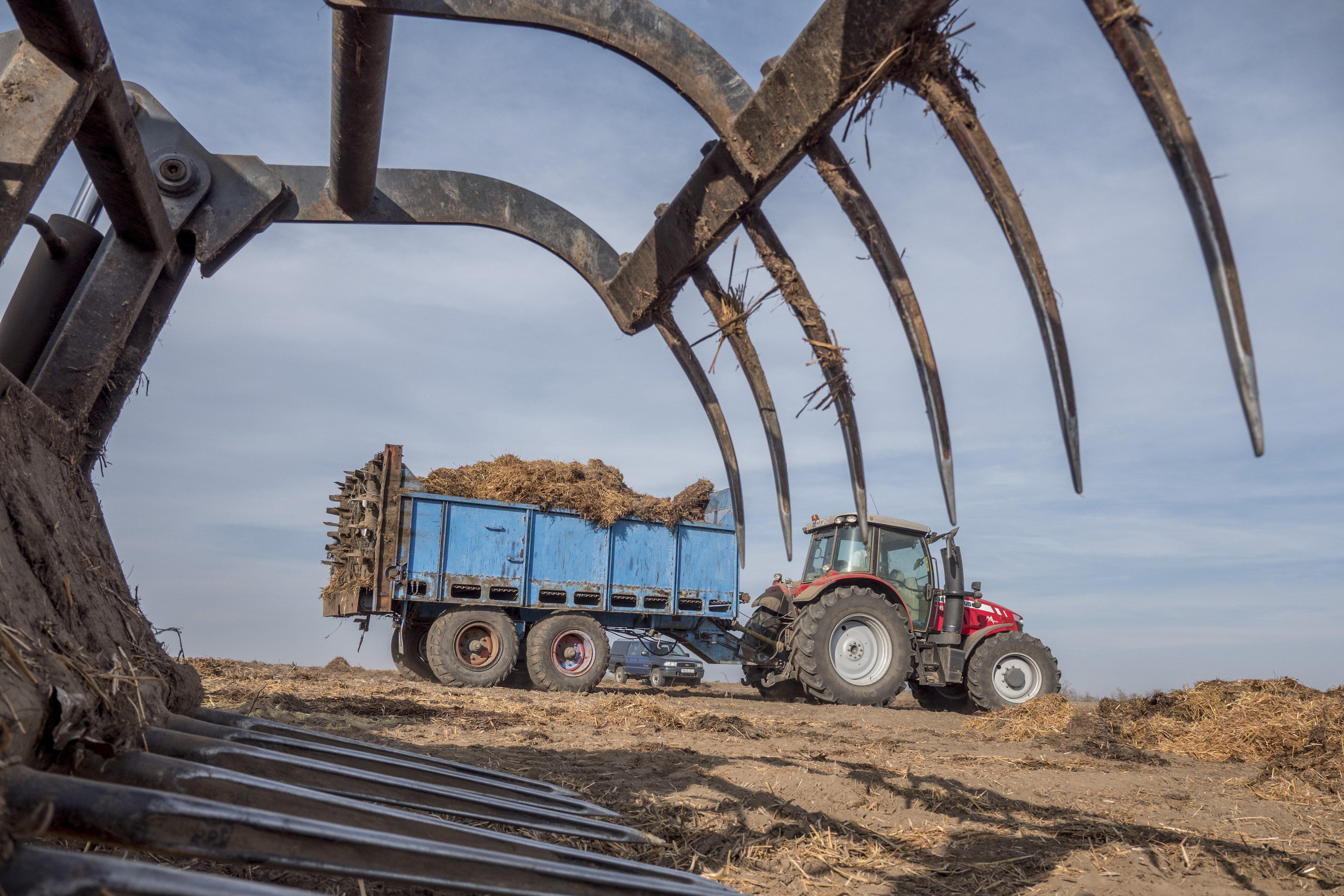 25-30 ezer idénymunkás is hiányozhat a mezőgazdaságból