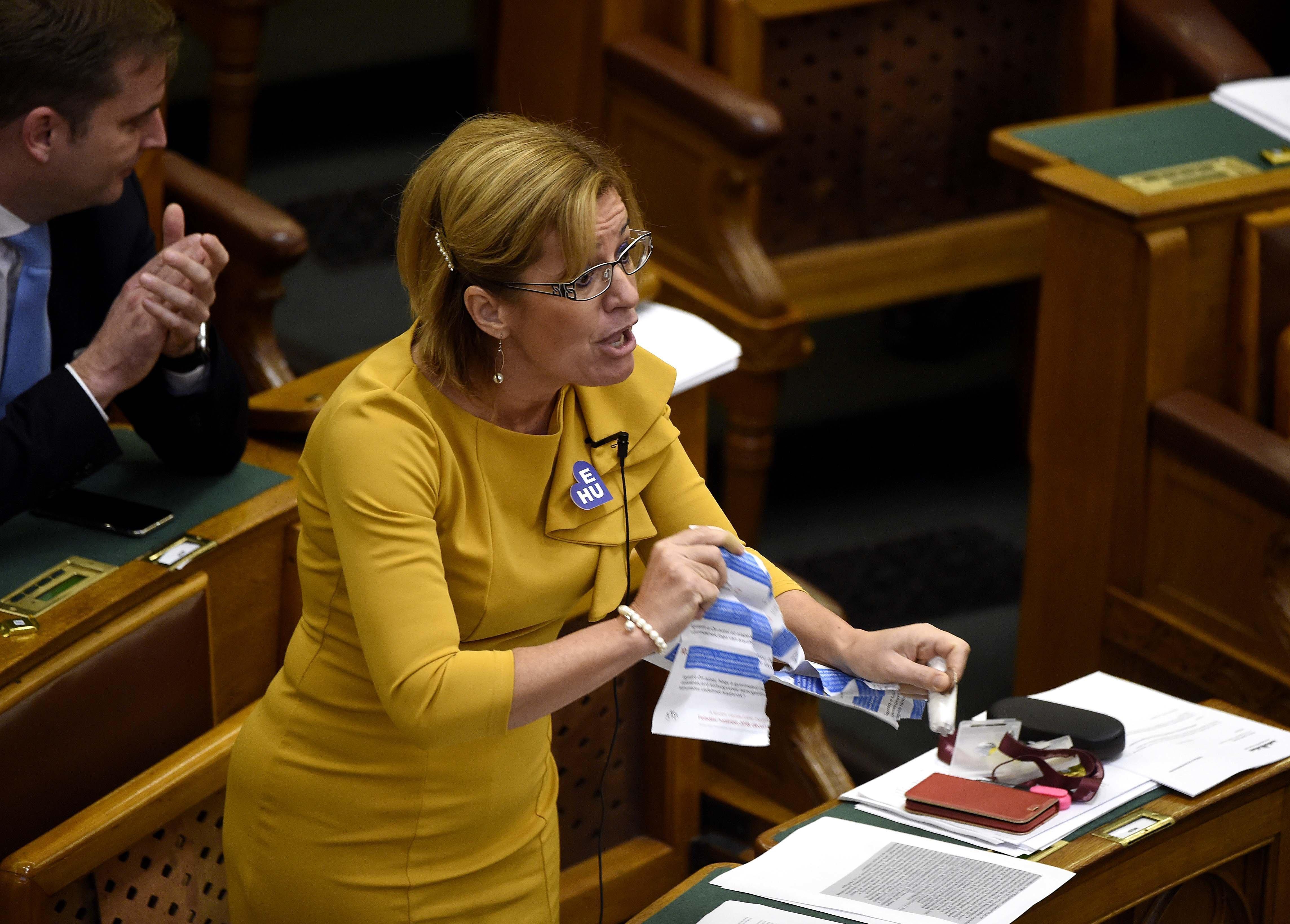 Bangóné szerint azért népszerű a Fidesz, mert túl sok a patkány