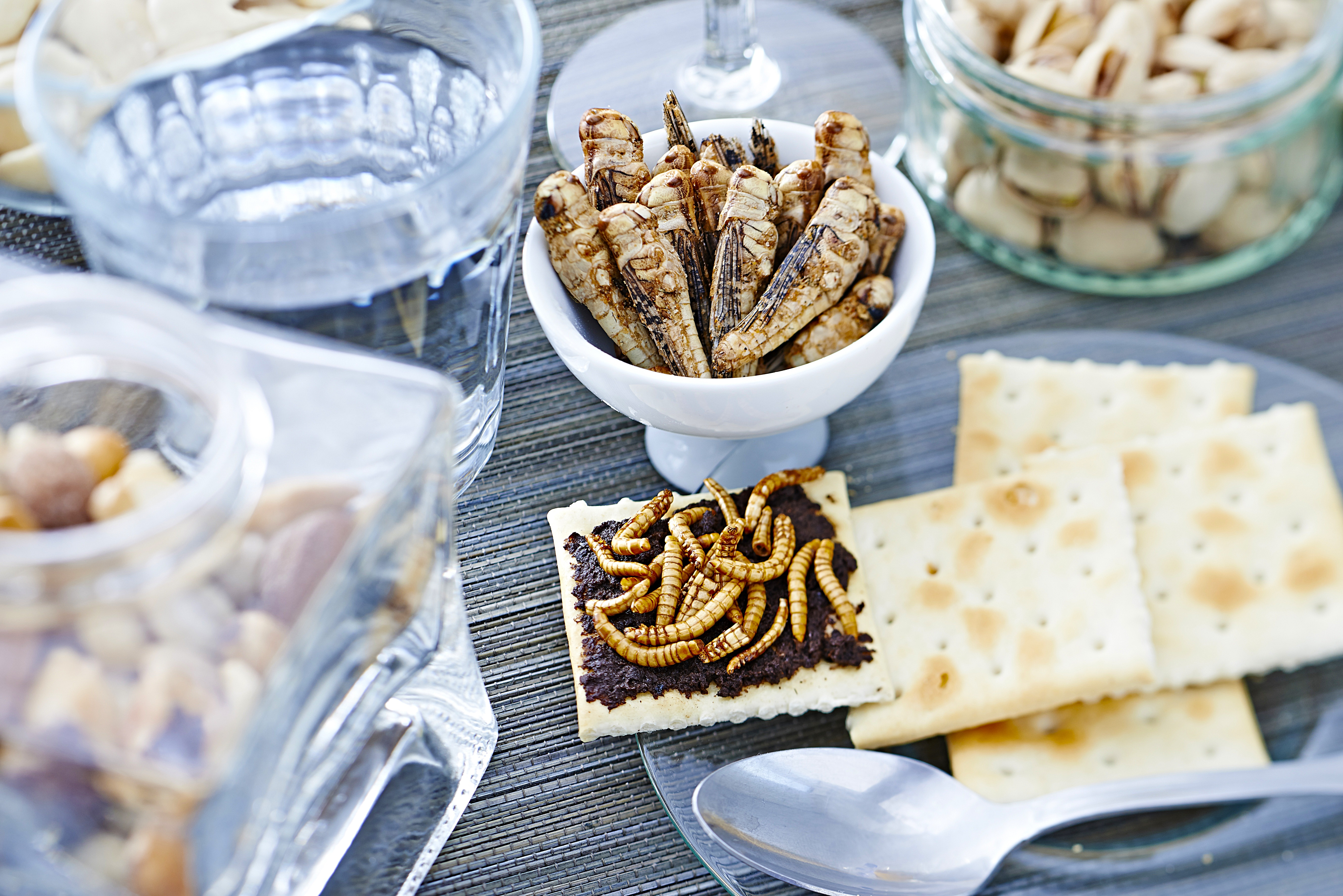 Megérkeztek az első sült rovarok az angol élelmiszerboltokba