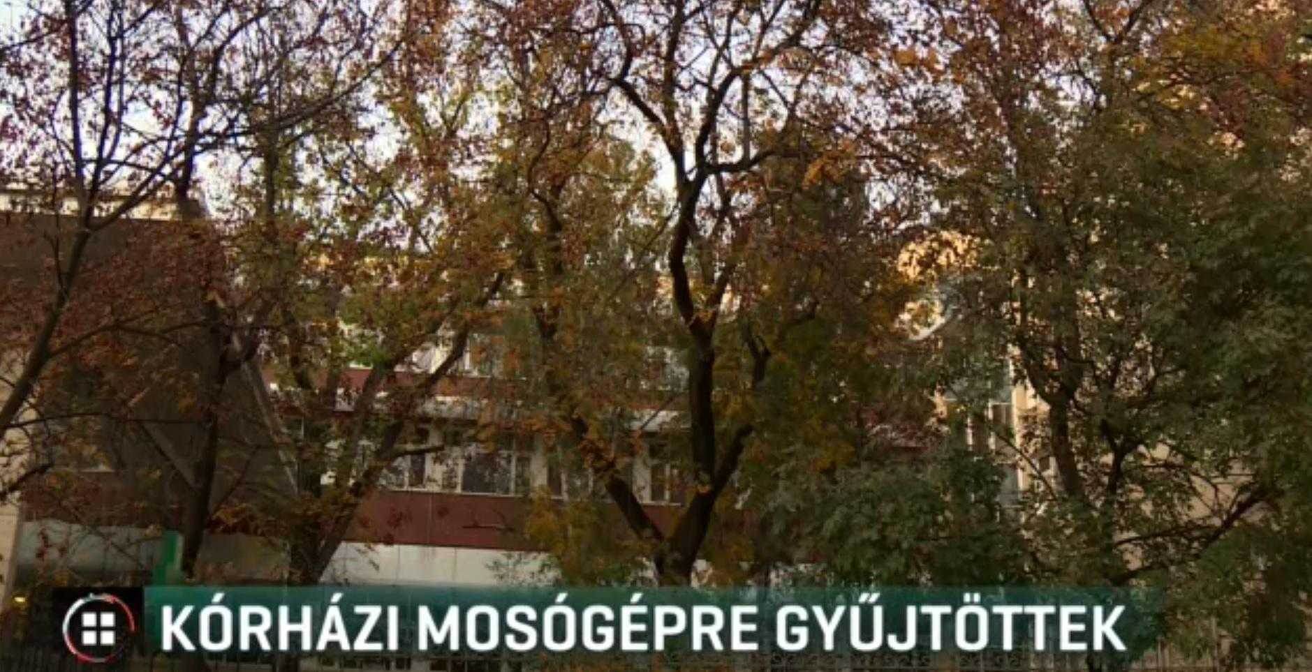 Elromlott a mosógép, otthon mosták a nővérek az újszülöttek ruháit a Semmelweis Egyetem Szülészetén
