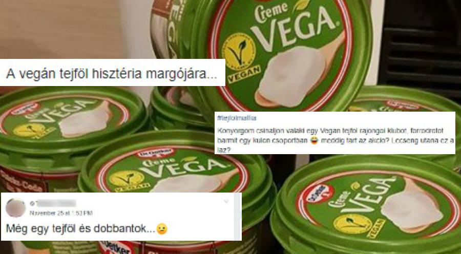 Akkora botrány van az aldis tejföl miatt a vegán csoportokban, hogy a brojlercsirkék is csak kikerekedett szemekkel nézik