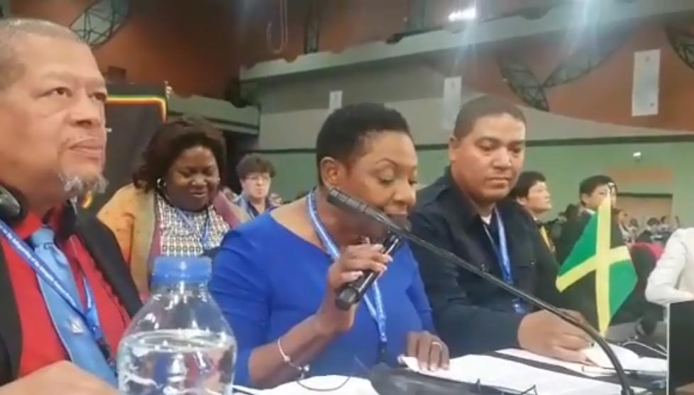 Nagy buli lett az ENSZ-ben, miután a szervezet védelmébe vette a reggaet