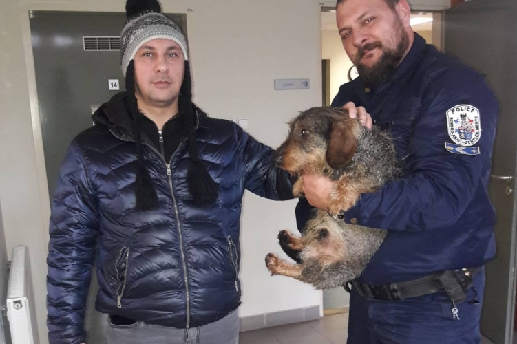 Tacskót mentettek a Tiszából a tokaji rendőrök