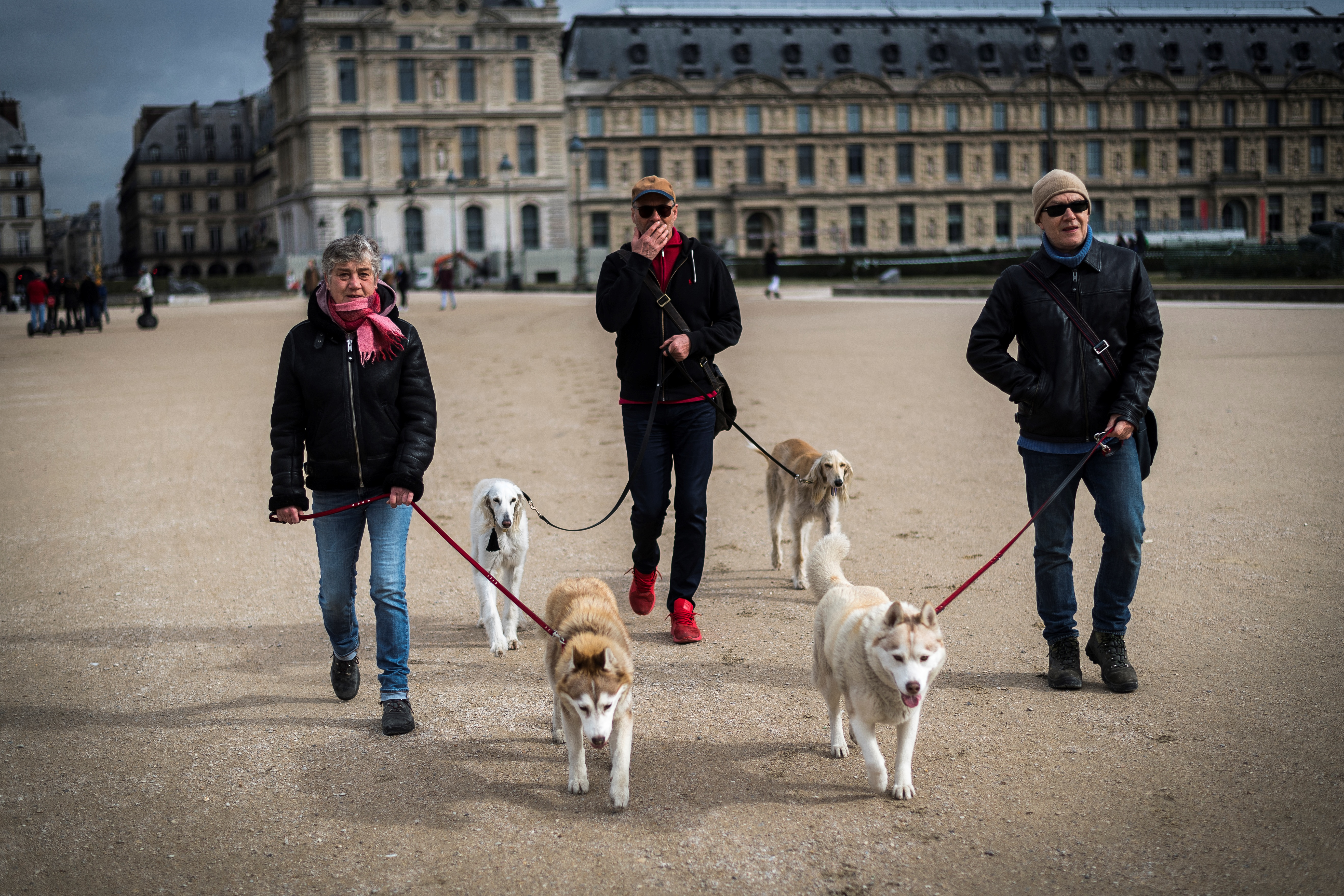 Beengedték a kutyákat a párizsi parkokba