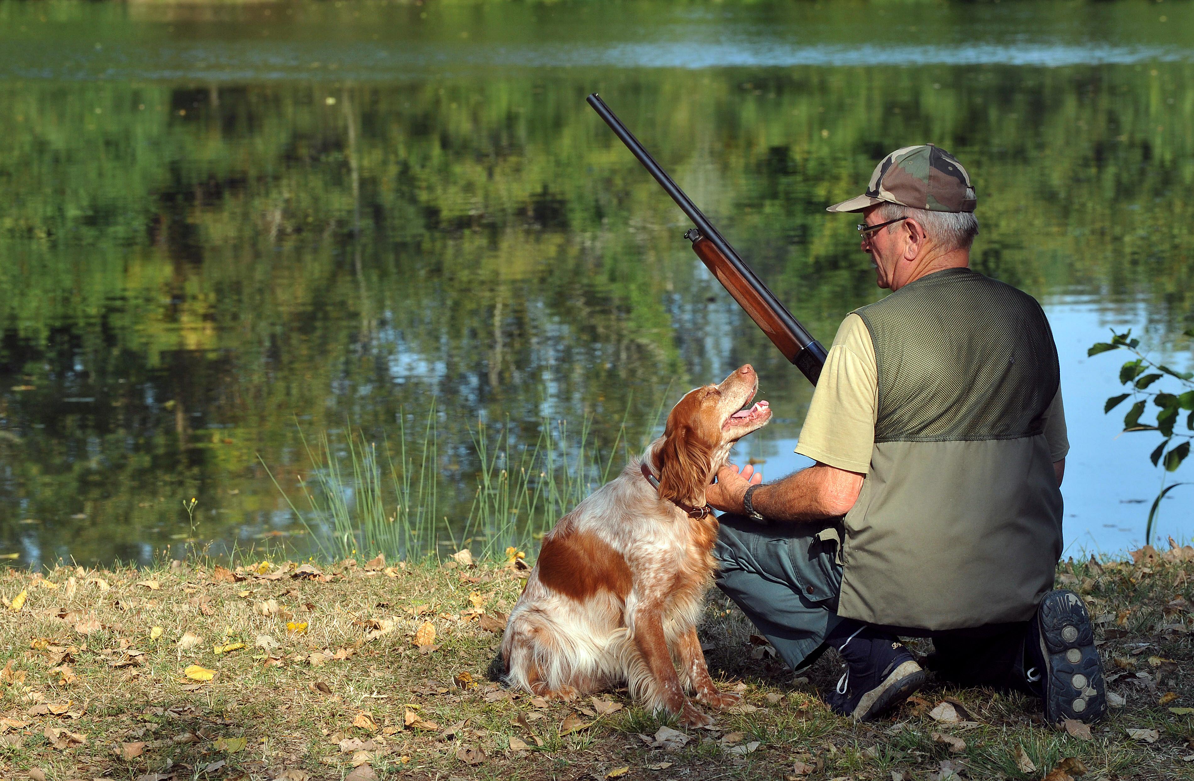 Nem lehet fegyvere a német vadásznak, akit a saját kutyája lőtt karon