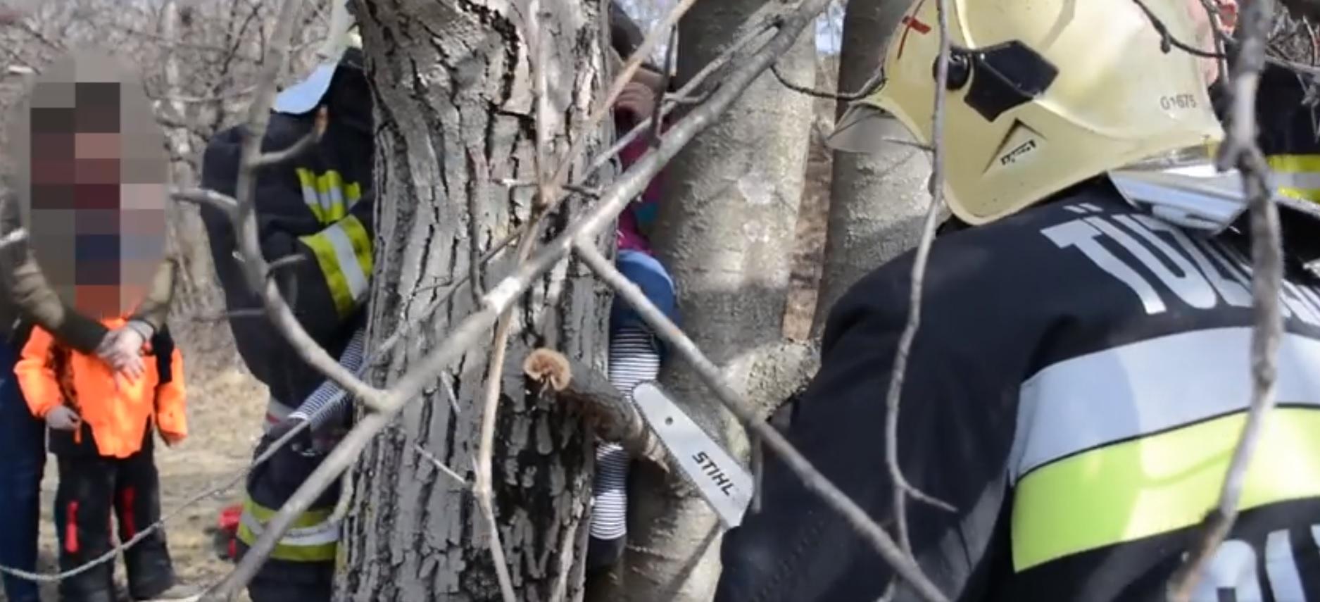 Egy fa törzsébe szorult egy kisgyerek Gazdagréten, láncfűrésszel kellett kiszabadítani