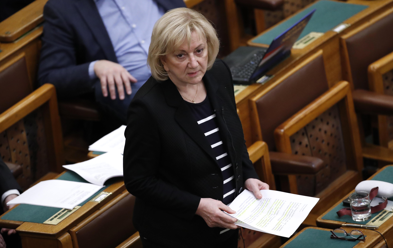 Schmuck Erzsébet az LMP új női társelnöke