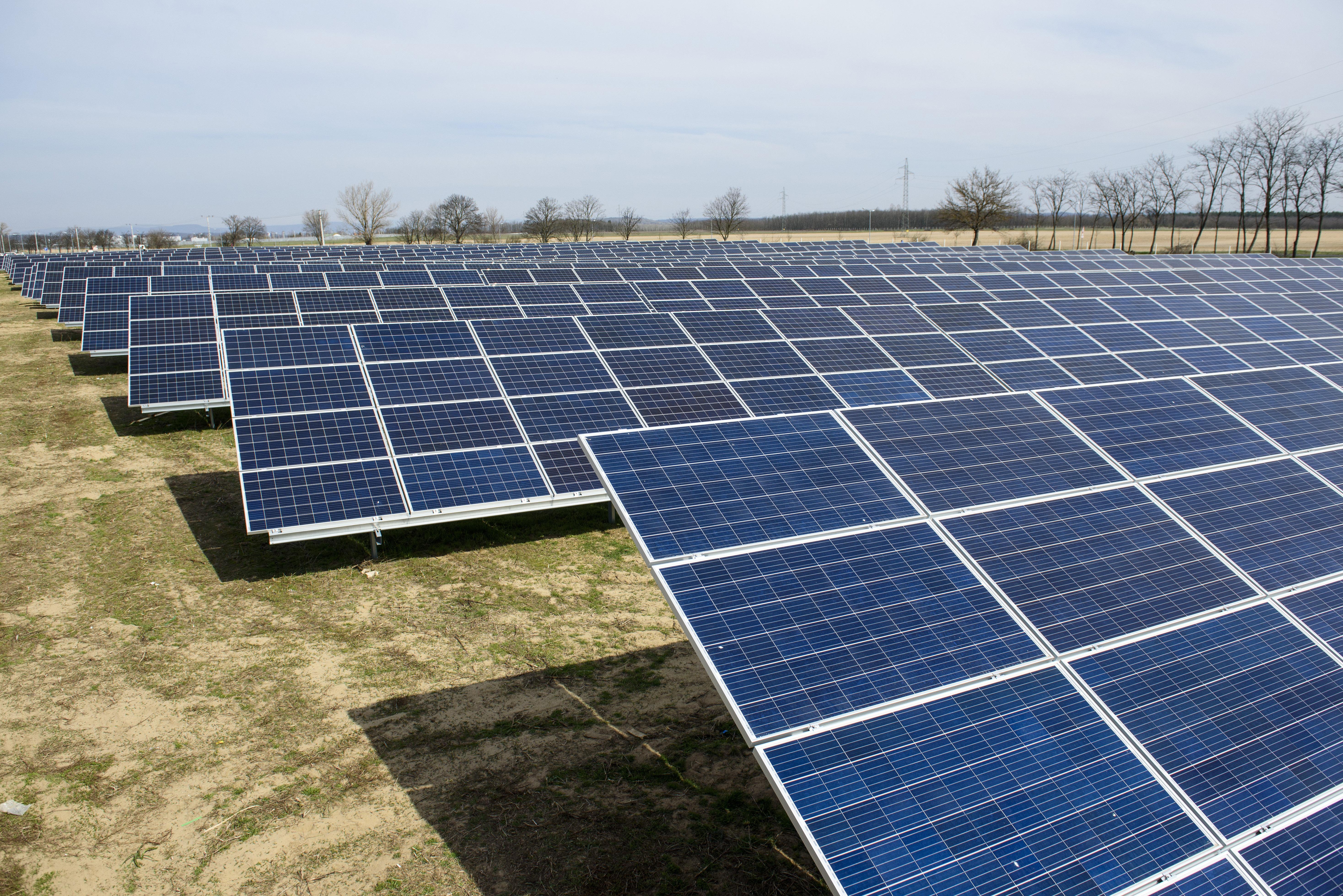 Tiborcz István üzletfelei 5,6 milliárdnyi közpénzt kaptak napelemparkokra, amint a kormány a klímavédelem felé fordult
