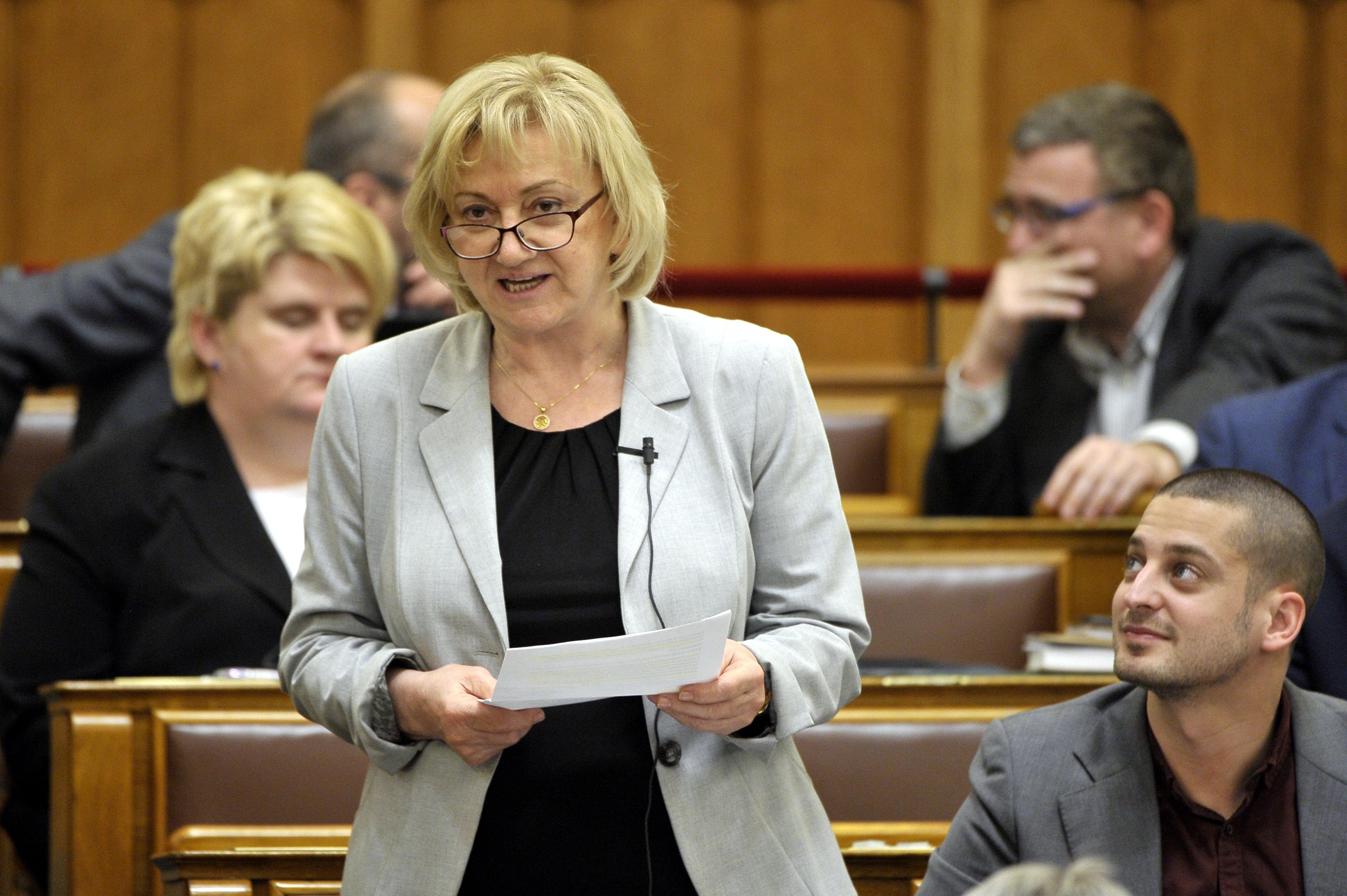 Kihelyezett bizottsági ülést tartana Schmuck Erzsébet a Mátrai Erőműnél