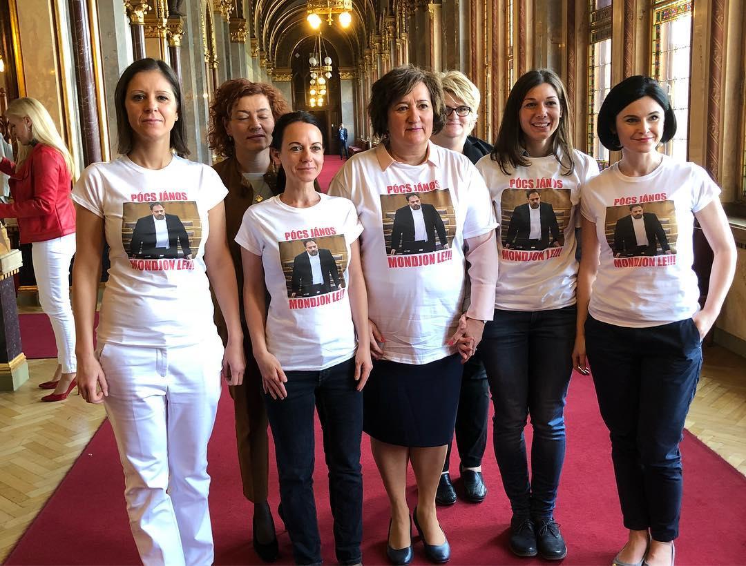 Ellenzéki képviselőnők követelik Pócs János lemondását