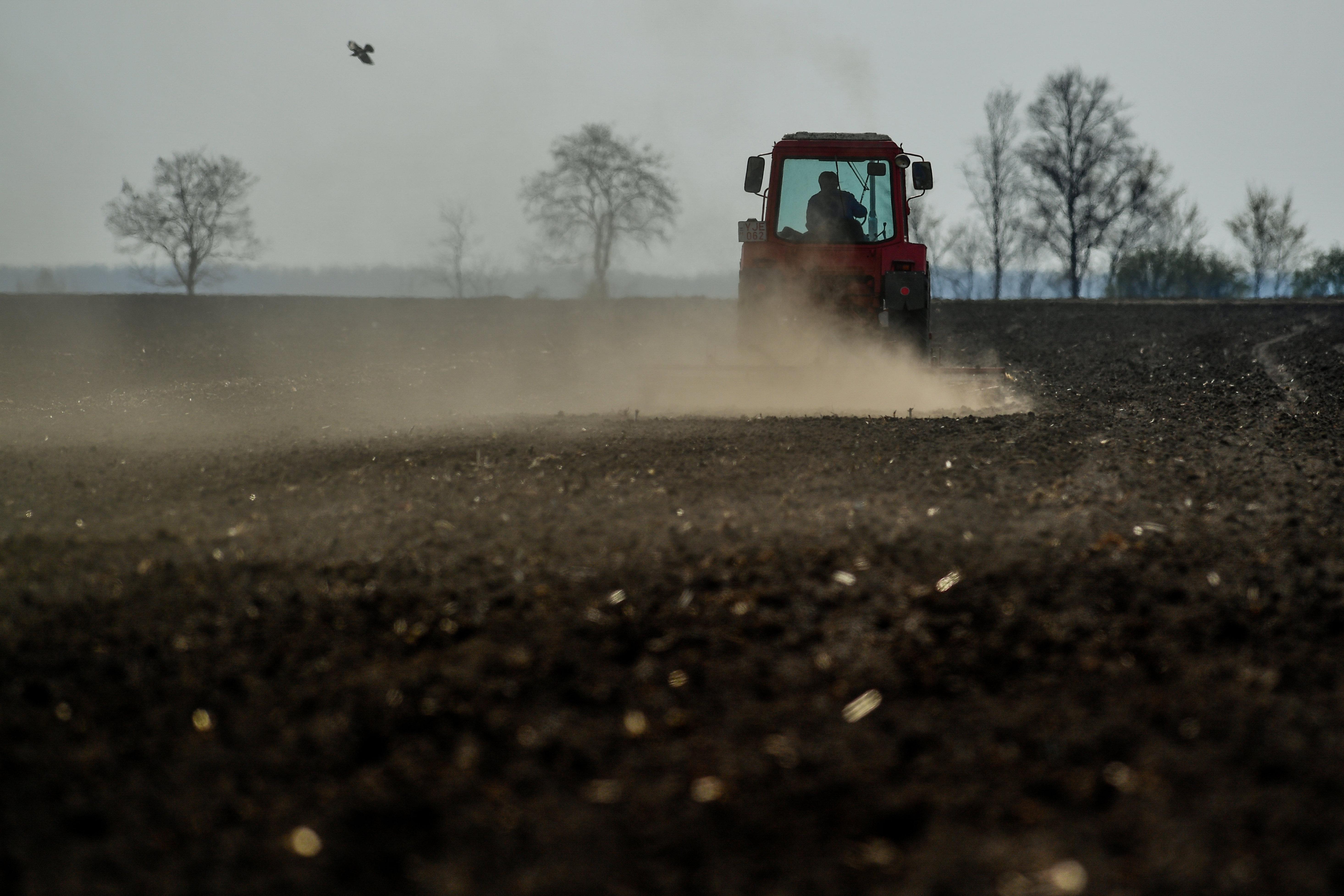 Nagyon beteg a világ agrártámogatási rendszere