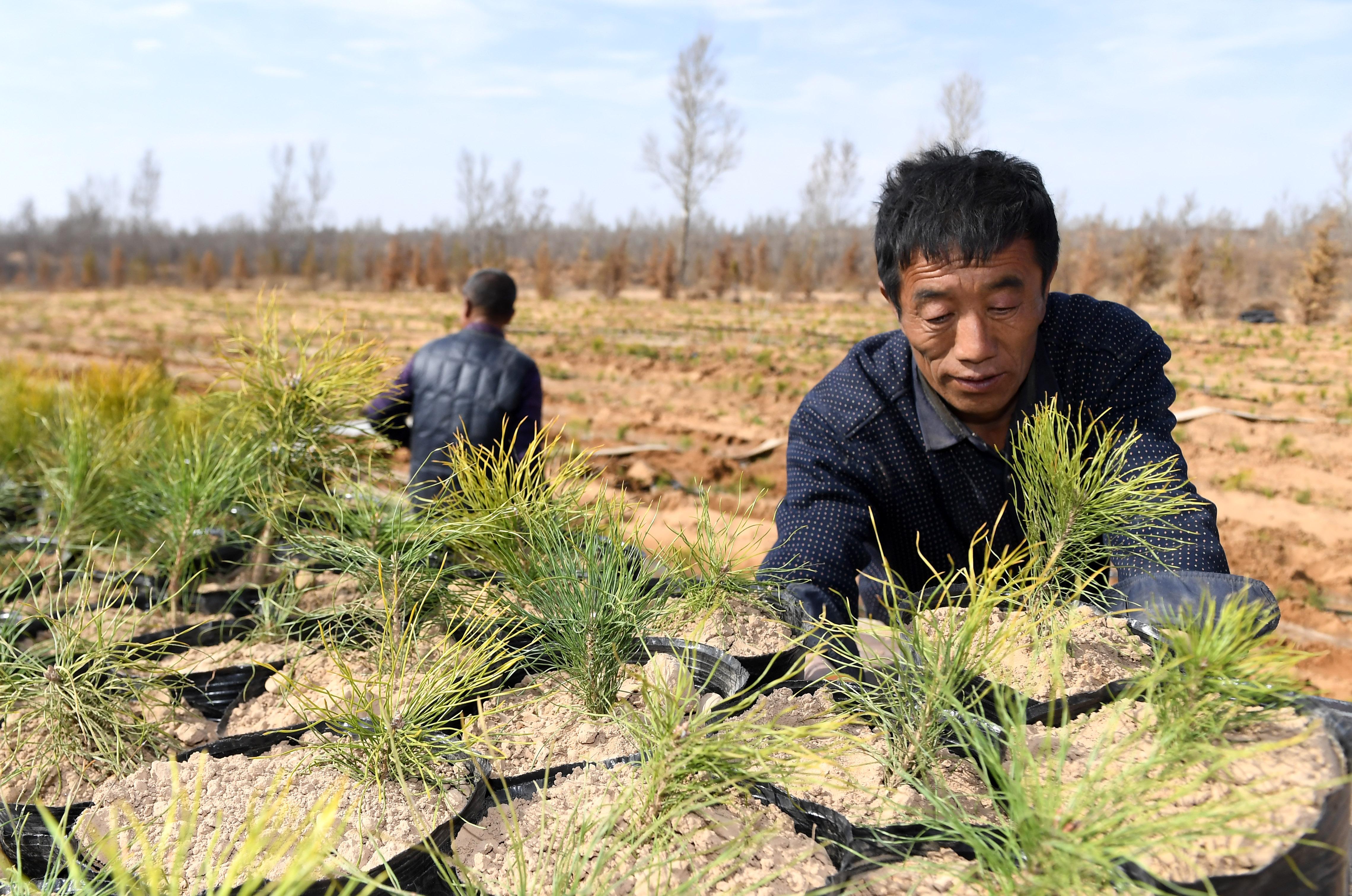 Fiatalok millióit irányítaná a kínai kommunista párt vidékre, hogy modernizálják az elmaradott régiókat