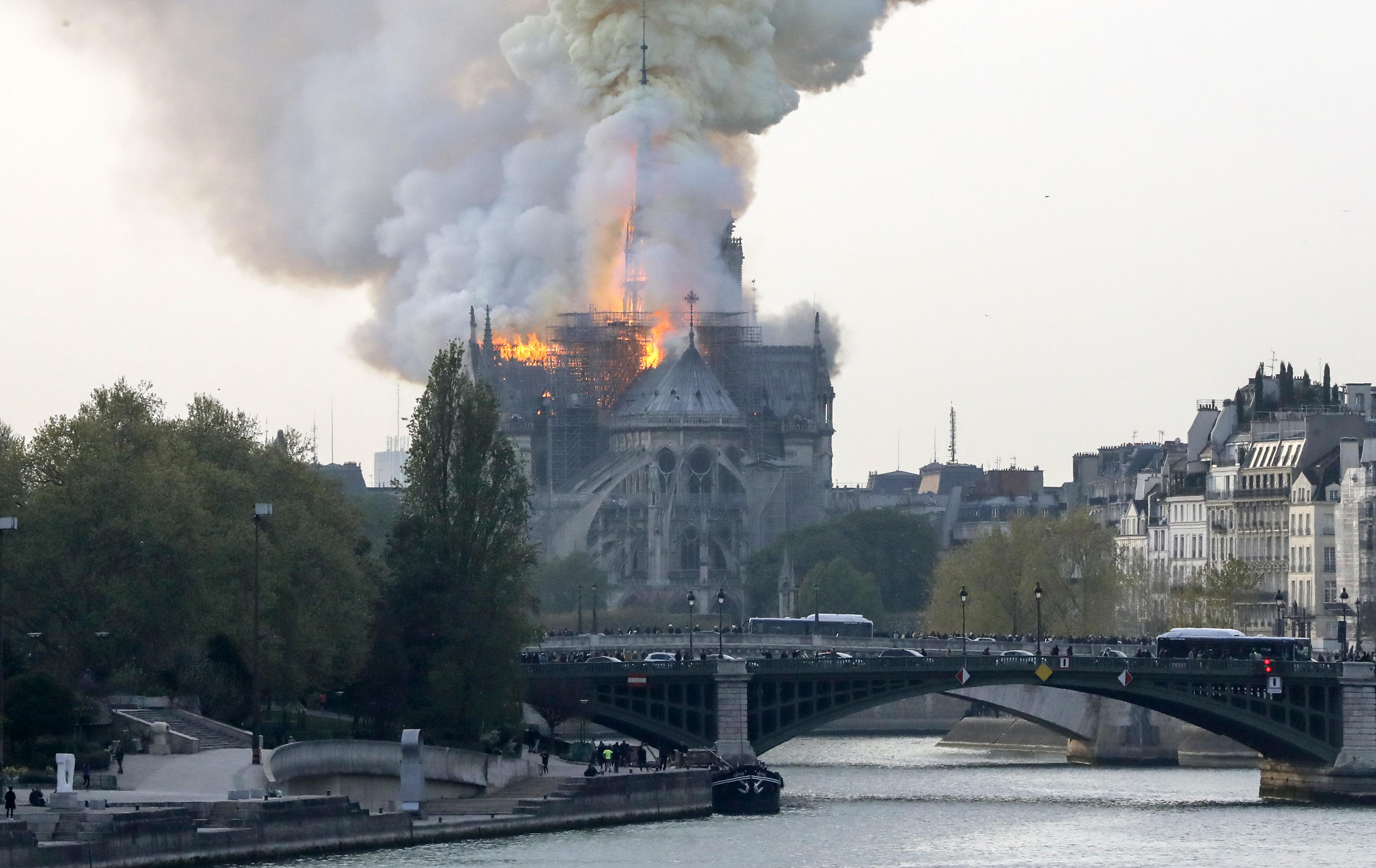 Lehet, hogy Európában nincsenek már elég magas fák a Notre-Dame helyreállításához