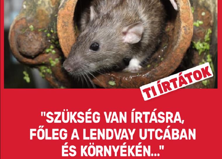 Az MSZP levette a patkányozós válaszvideót a Facebook-oldaláról