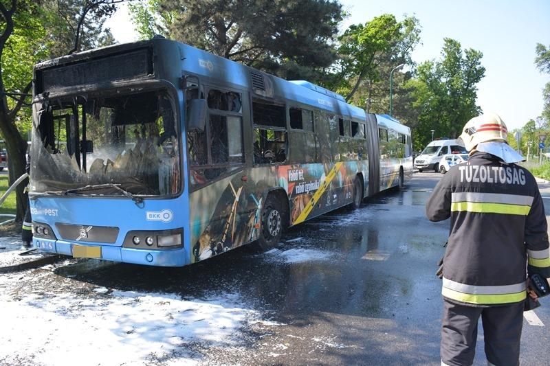 Teljesen kiégett egy csuklós busz a Margitszigeten