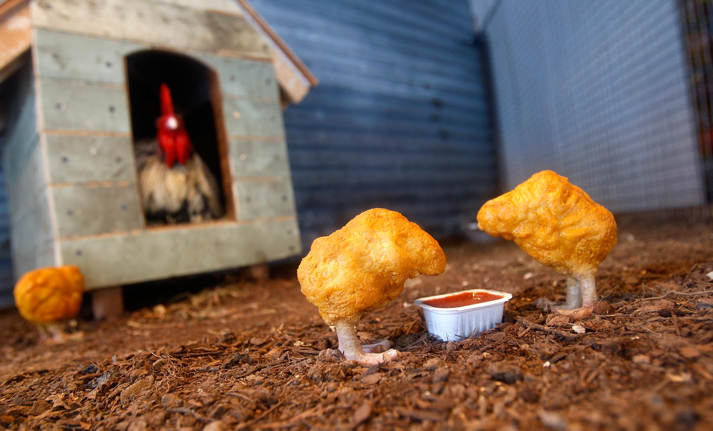 5500 tonna csirkét hívnak vissza az amerikai boltokból, mert fémet tartalmazhatnak
