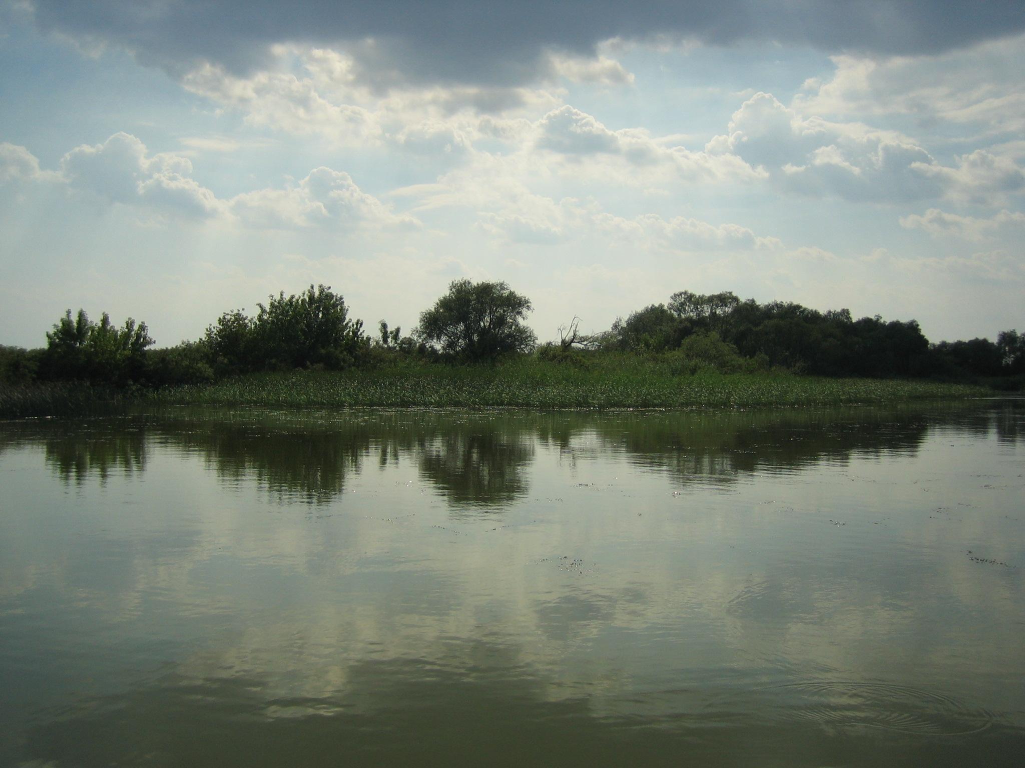 Ólmot és rákkeltő anyagokat lőhettek bele egy természetvédelmi területen a Holt-Tiszába