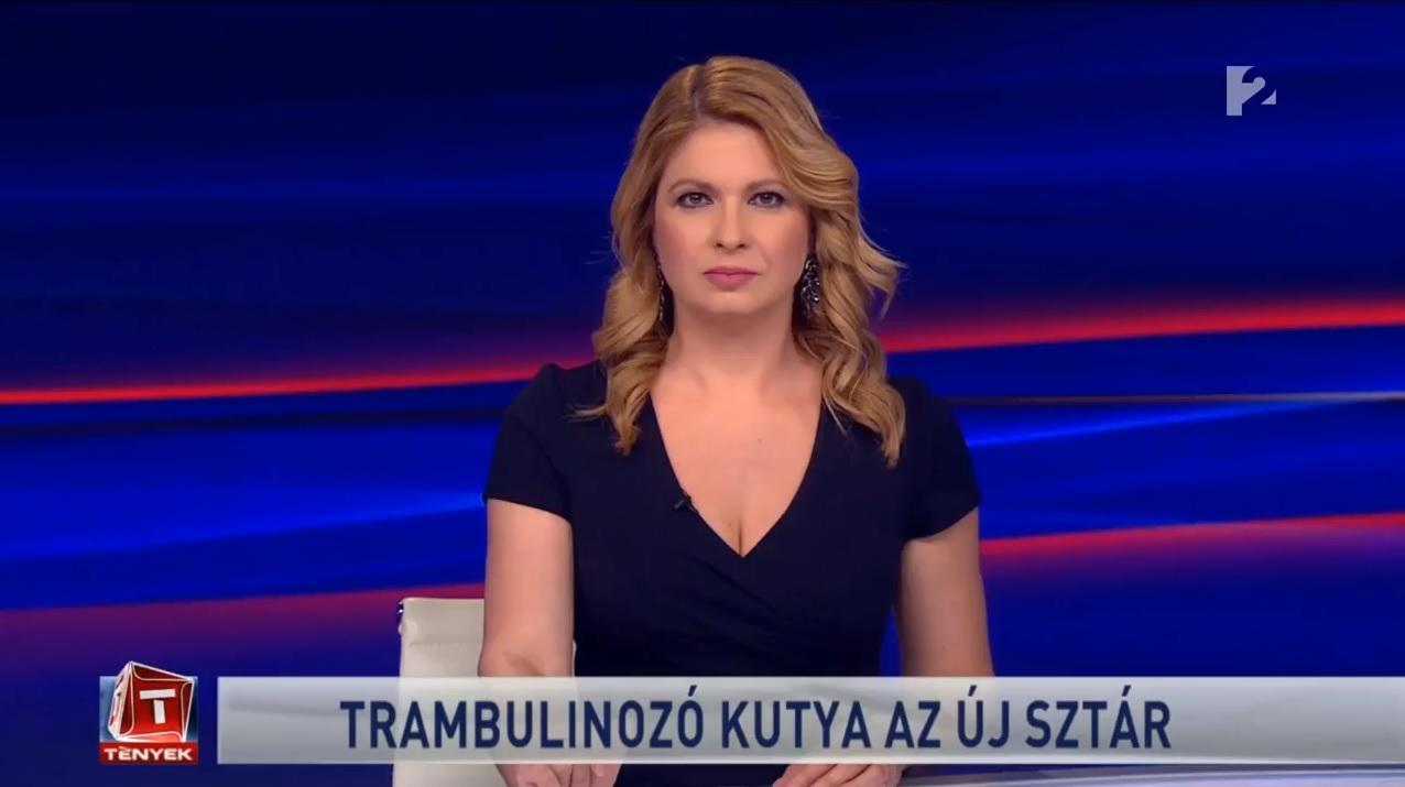 A Tények egy határozat elhadarásával megúszta, hogy leadta a Fidesz reklámját