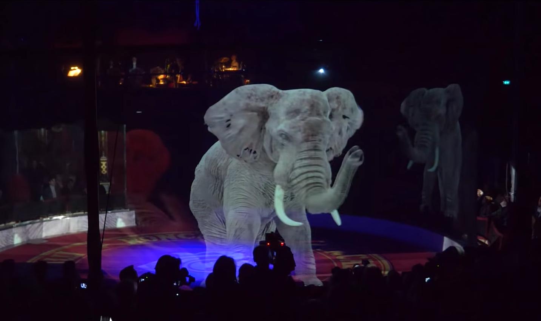 Hologram az elefánt egy német cirkuszban