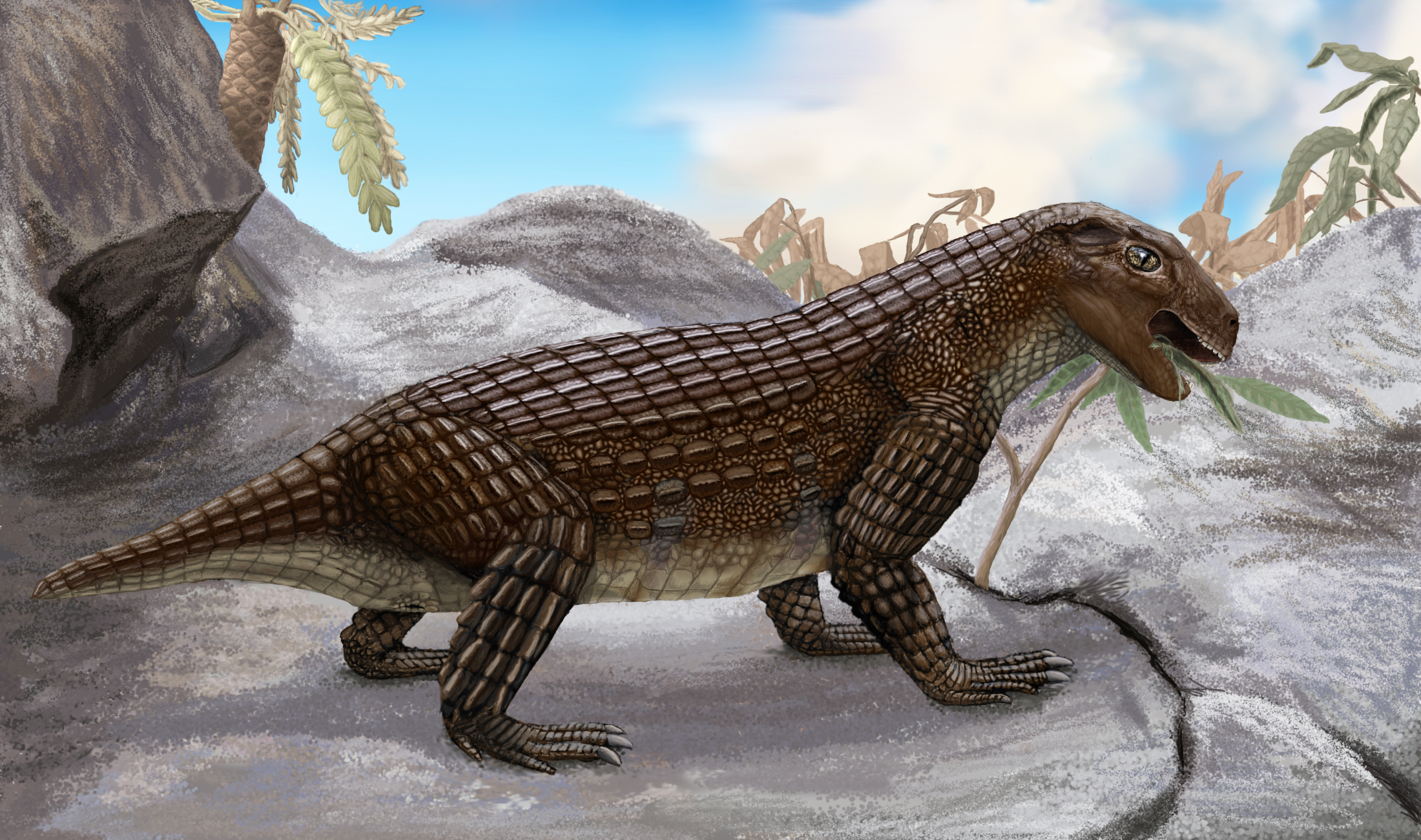 Vegetáriánus krokodilfélék lakták régen a bolygót