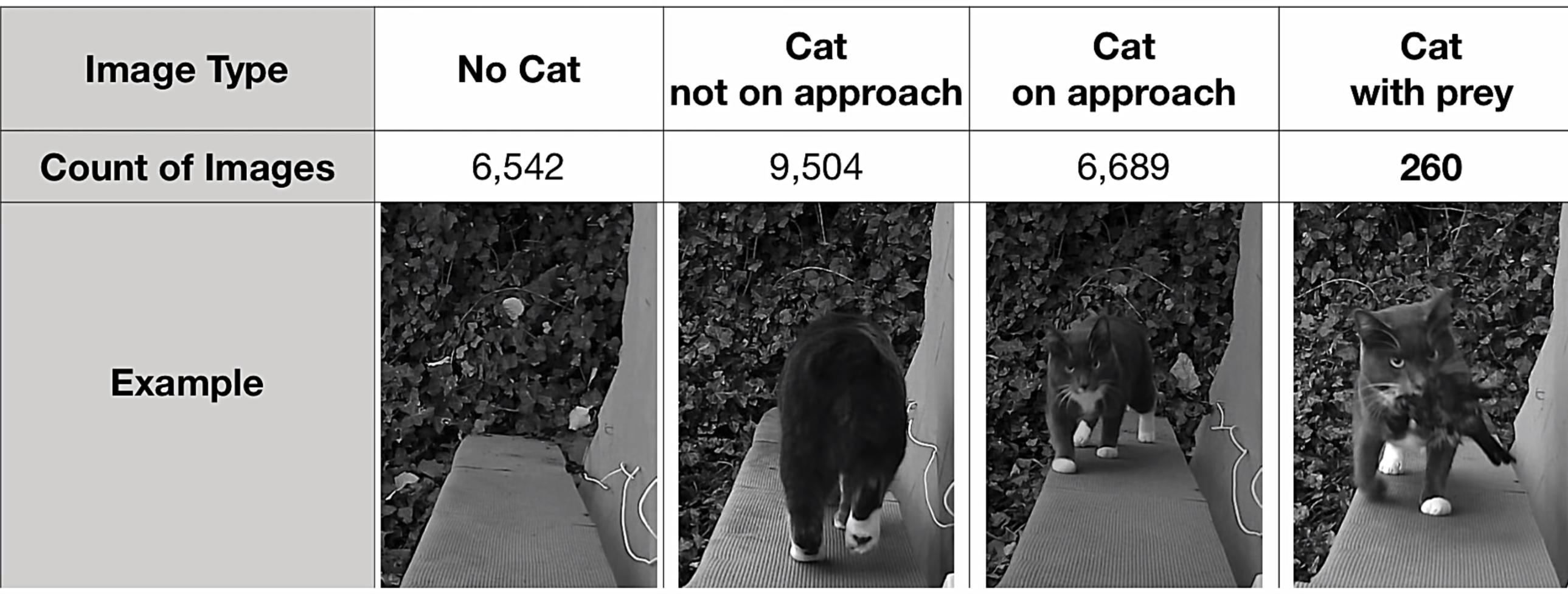 Algoritmus vezérelte macskaajtót épített egy mérnök, hogy a macskája többet ne hordhasson haza elejtett állatokat a házba