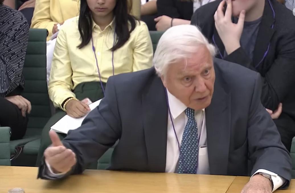 Attenborough a klímaváltozásról: Olyan a helyzet, hogy nem lehetünk eléggé radikálisak