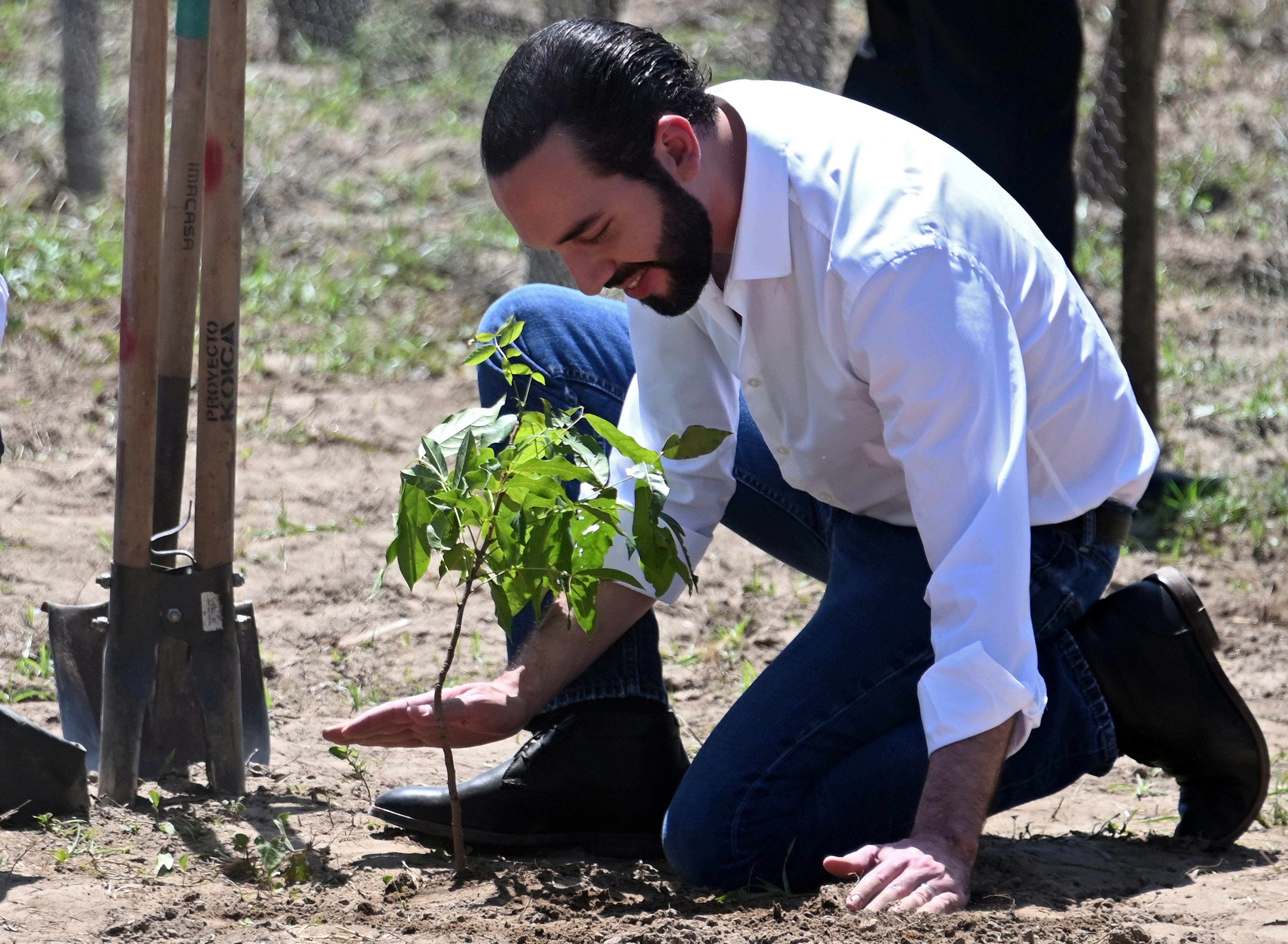 Orbánék bealudtak Gábor Zsazsa trash-temetésén, a sátáni Cukkemberg zsidó pulival poralizál