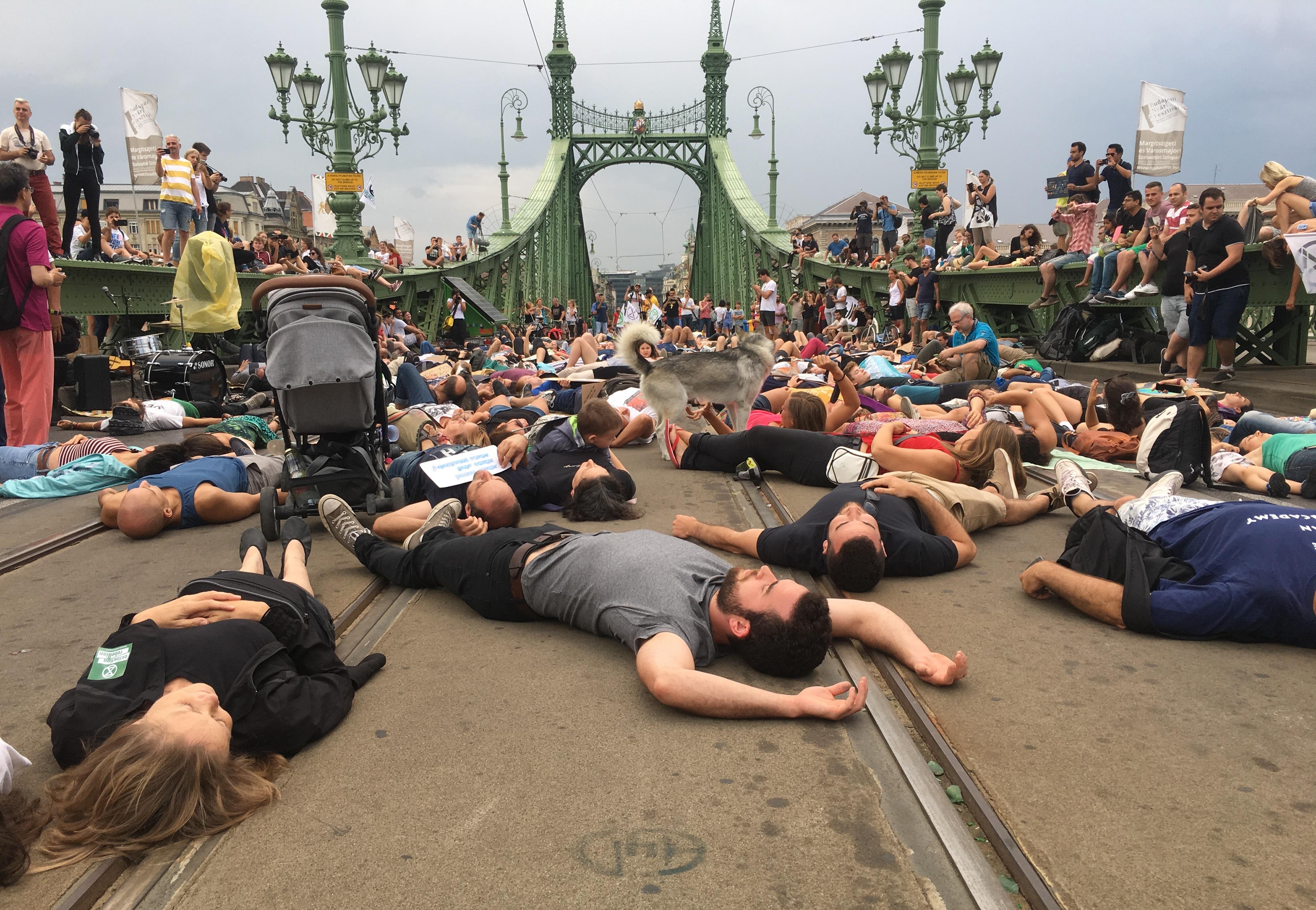 A Szabadság hídra feküdtek a klímatüntetők