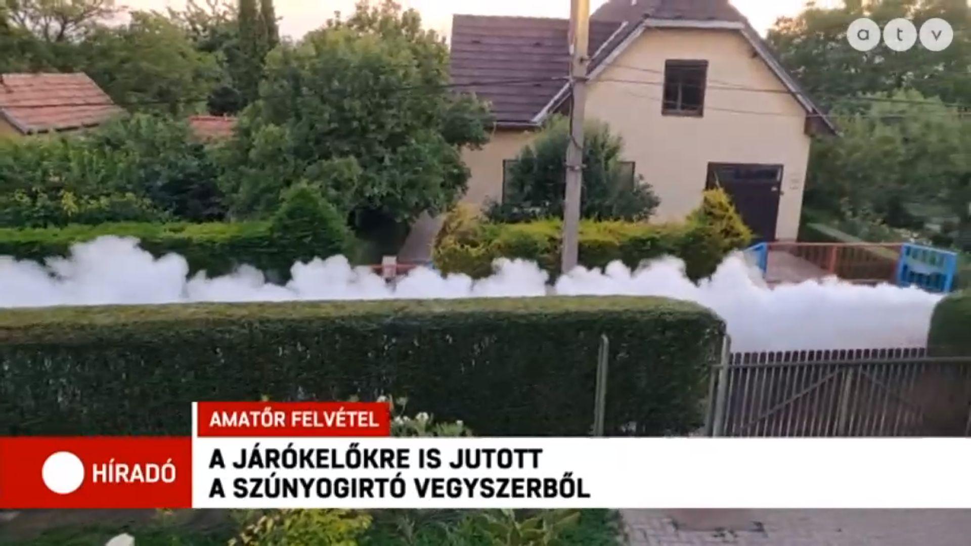 Alaposan leszúnyogirtózták egy pécsi kertváros lakóit
