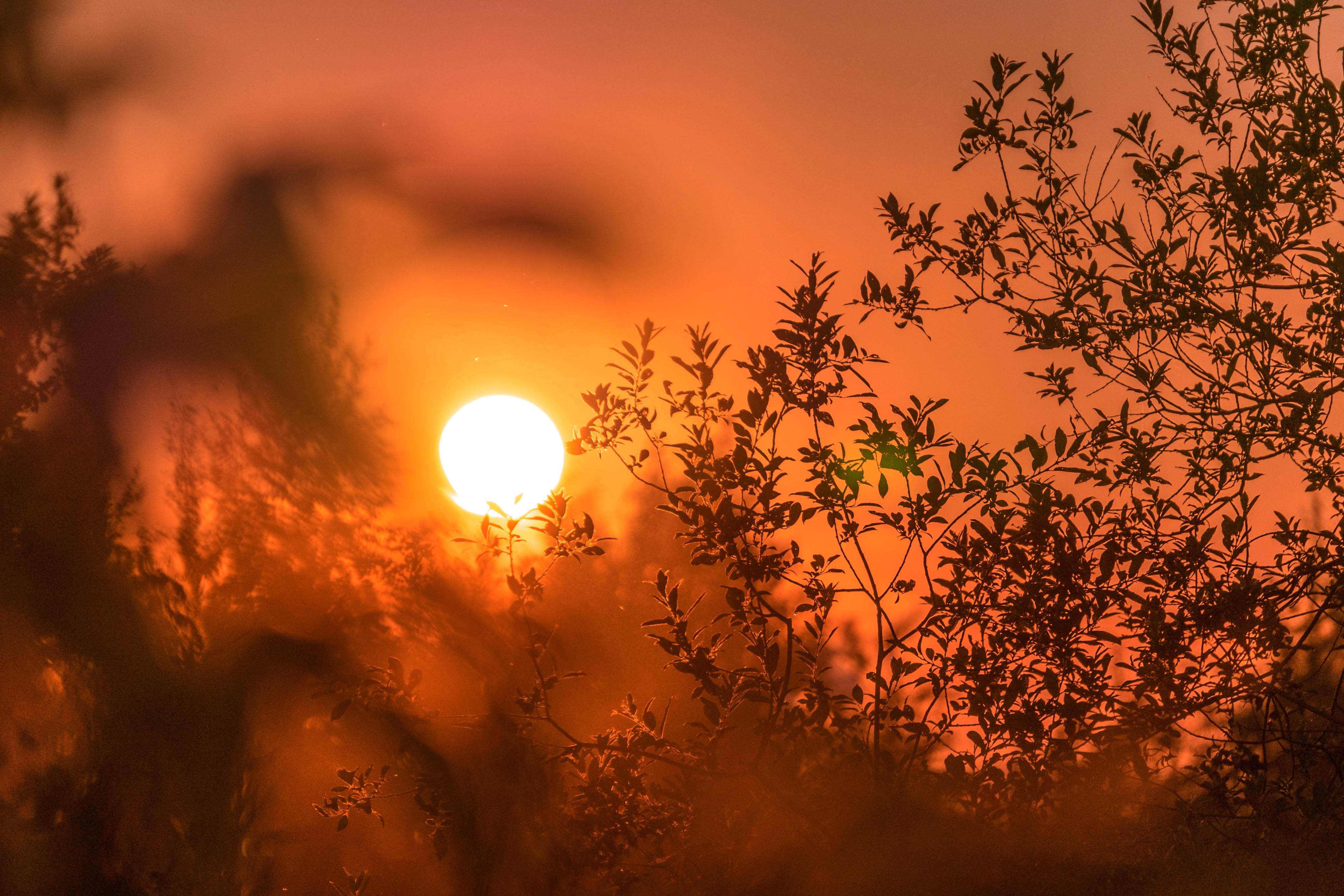 A nyár legmelegebb napja jöhet ma Magyarországon